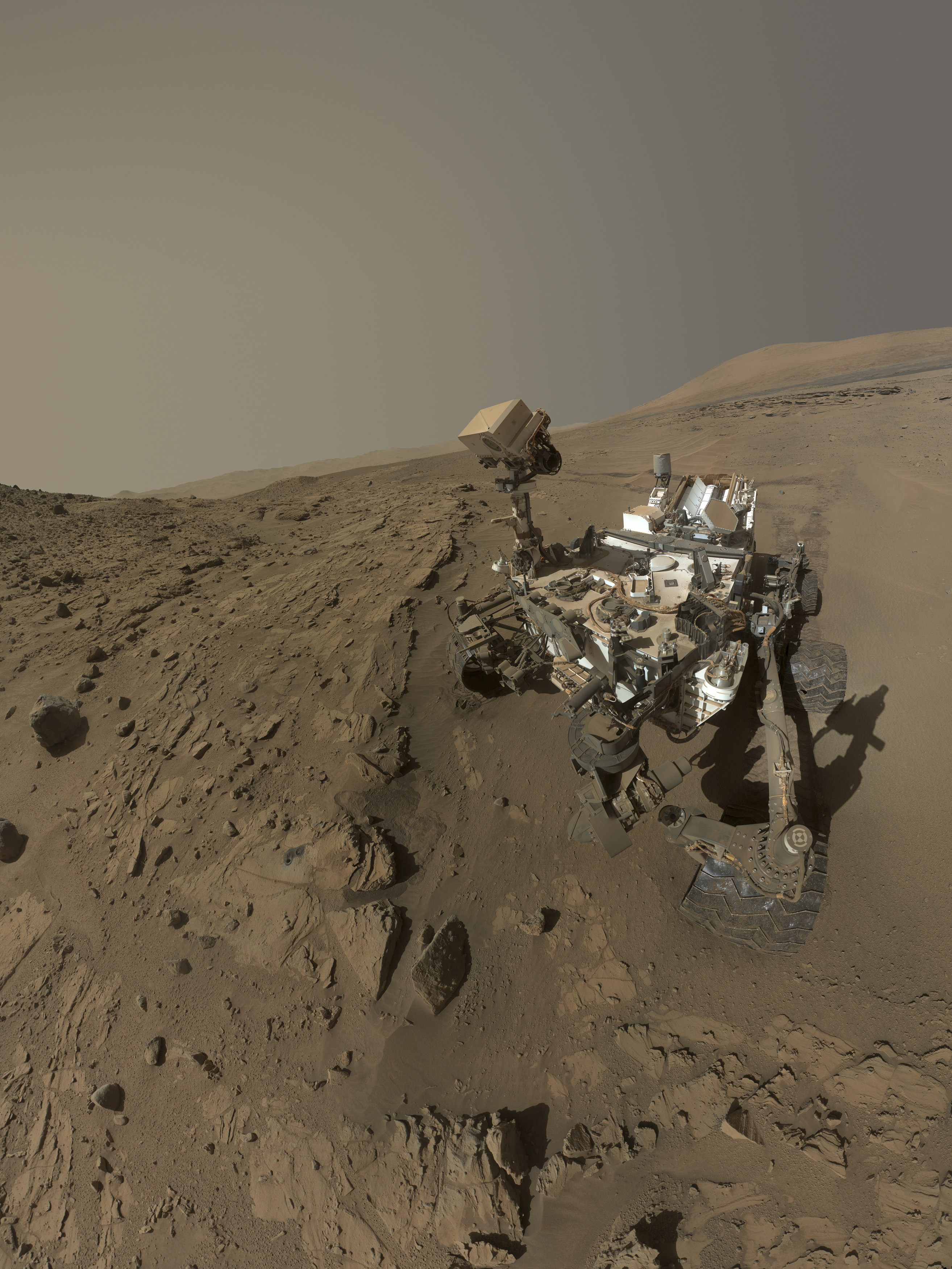 NASA's Mars Curiosity rover is pictured in this self-portrait where the rover drilled into a sandstone target called  Windjana  on Mars in this handout photo. June 2014.