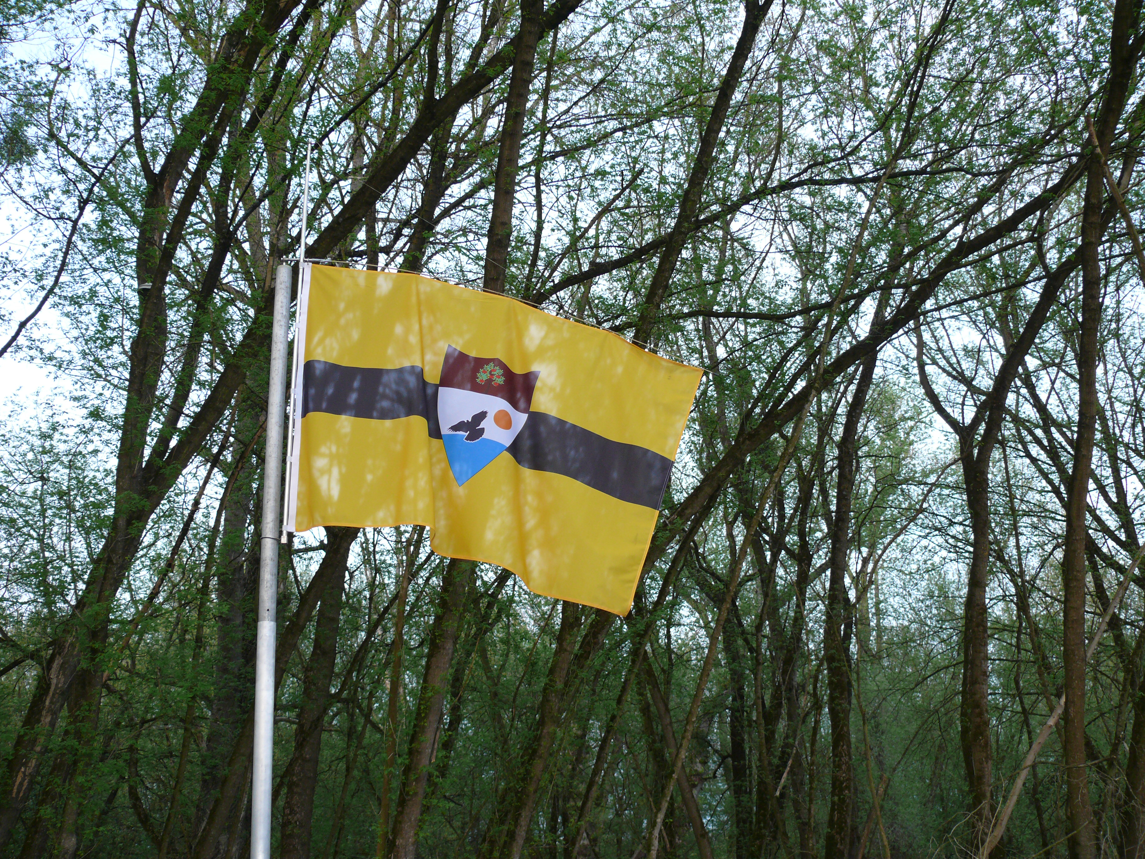 The flag of Liberland.