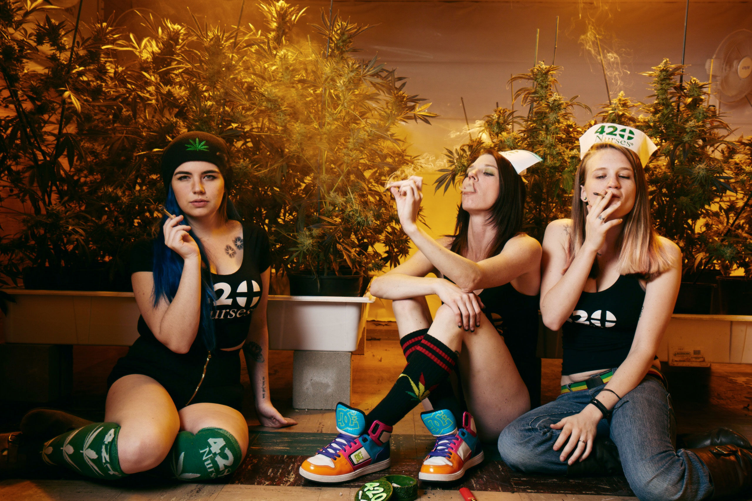 "<b>From left to right, Kathryn Schechter (aka 710 Witch), 21, Alexis Gavin (aka Lexileggo), 23, Katelyn Chapman (aka Katie Kush), 23. </b>                                    Chapman: ""If I could dispel one myth about cannabis, it would probably have to be that the use leads to addiction and dependence."""
