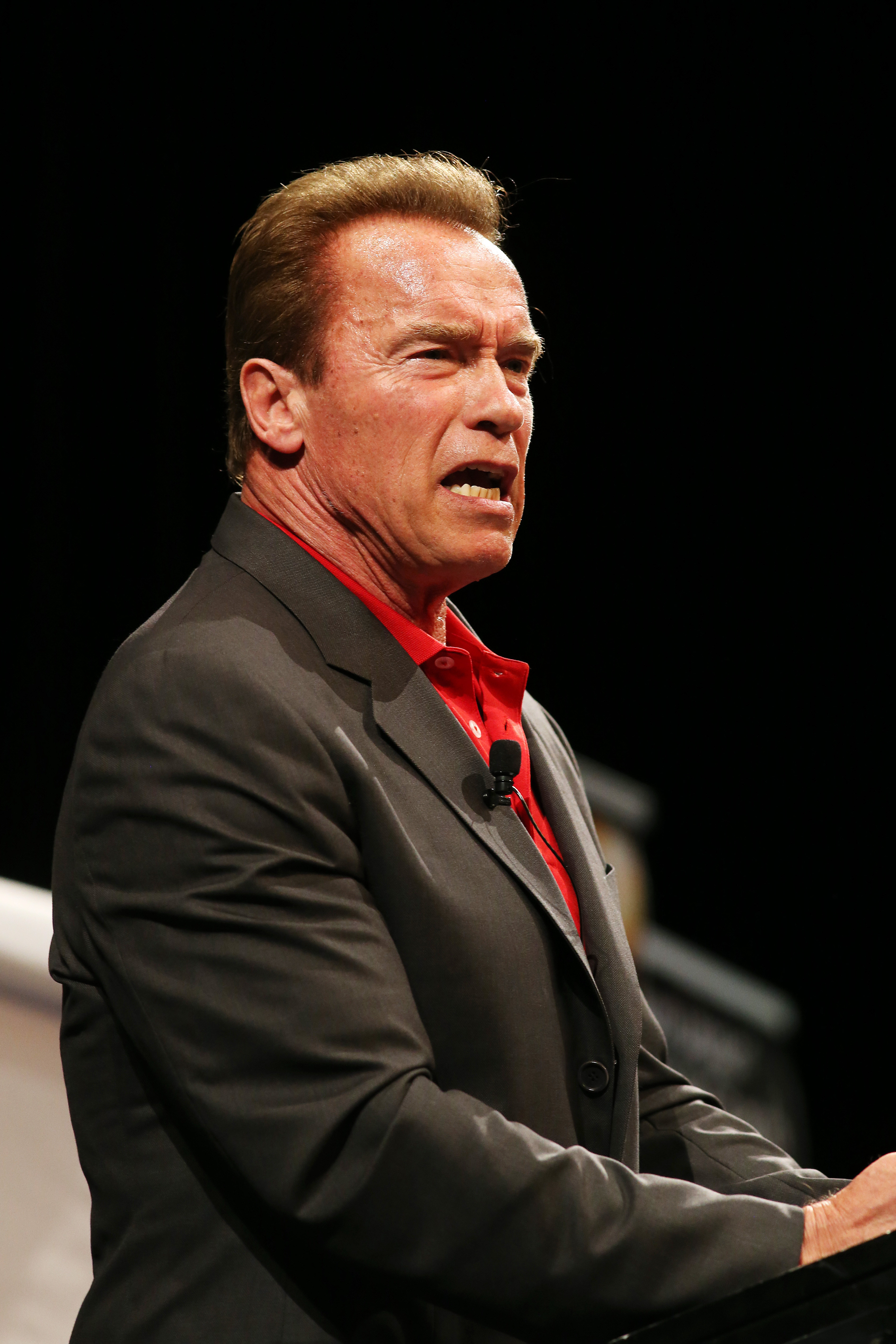 Arnold Schwarzenegger attends the Queensland Real Estate Agents' Summit 2015 at RNA Convention Centre on March 17, 2015 in Brisbane, Australia.