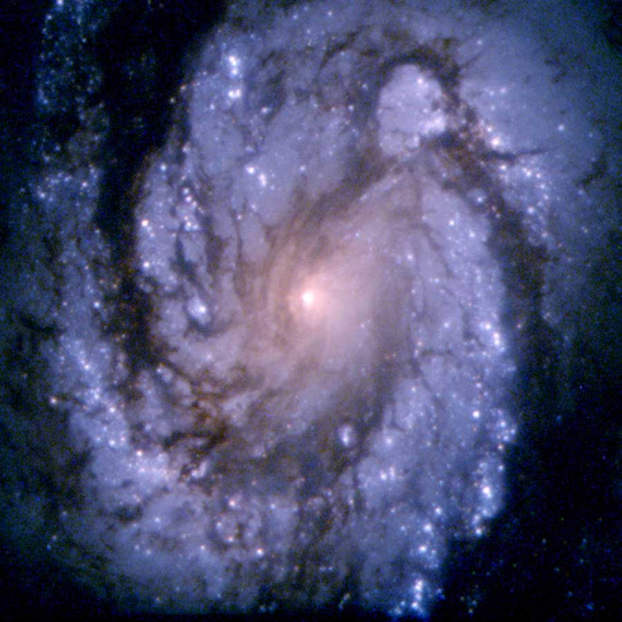 "<strong>M100</strong>:                                   This image of the spiral galaxy M100 was obtained with the second generation Wide Field and Planetary Camera (WFPC-2. Though the galaxy lies several tens of millions of light-years away, modified optics incorporated within the WFPC-2 allow Hubble to view M100 with a level of clarity and sensitivity previously possible only for the very few nearby galaxies that compose our ""Local Group."" Astronomers must study many galaxies in a host of different environments  to understand how our own galaxy, our star, and our earth came to be.                                    <i>Image released in 1994</i>"