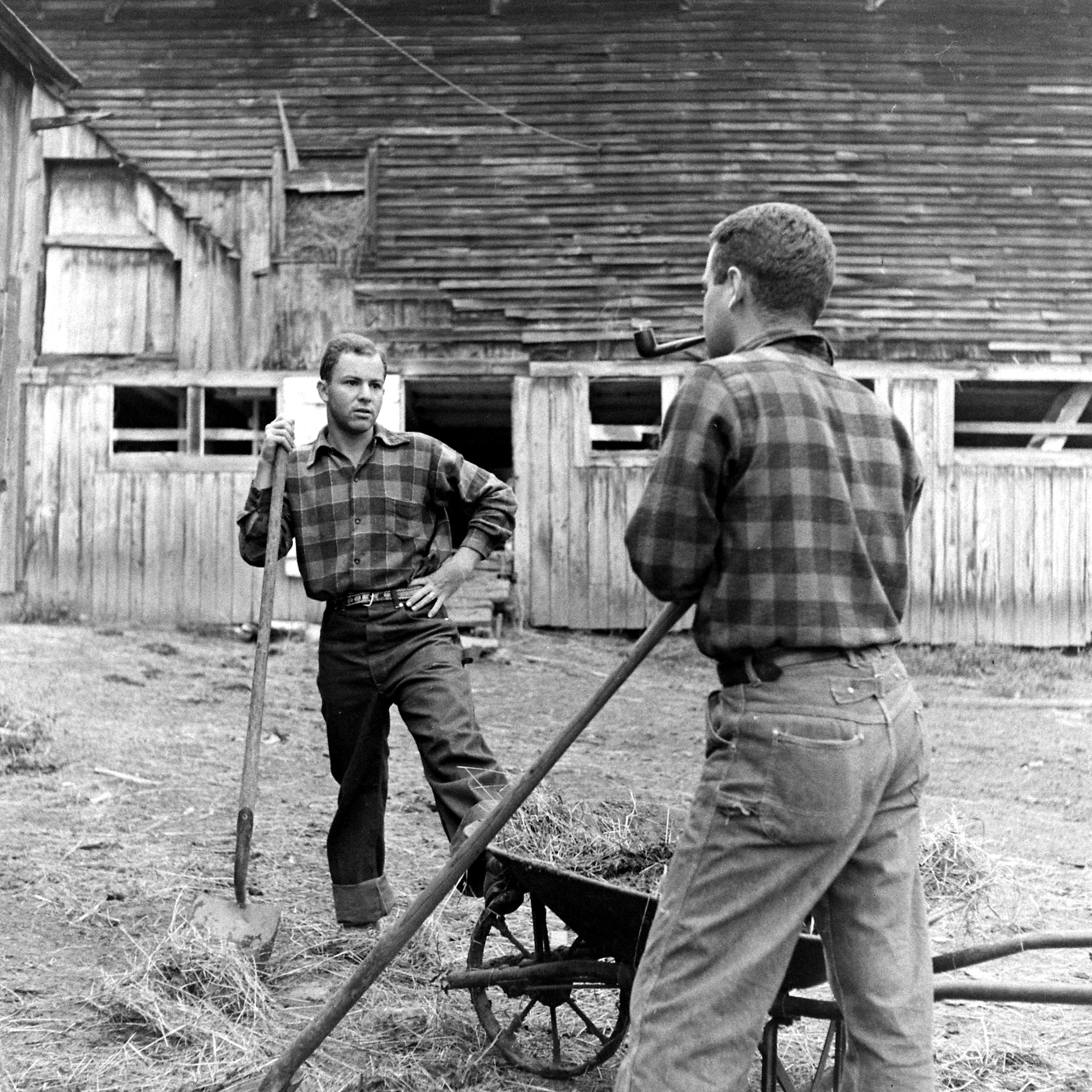 Two volunteers with the Land Corps in Vermont.