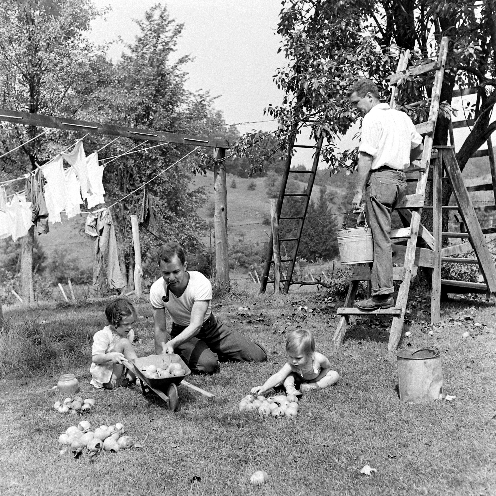 Volunteers with the Land Corps in Vermont.