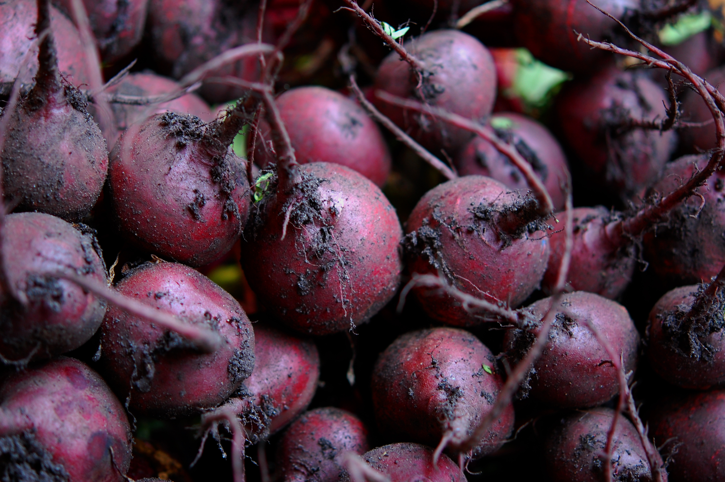 You may think beets are a vegetable for the fall and winter, but they are in season and quite tasty in the summer too.