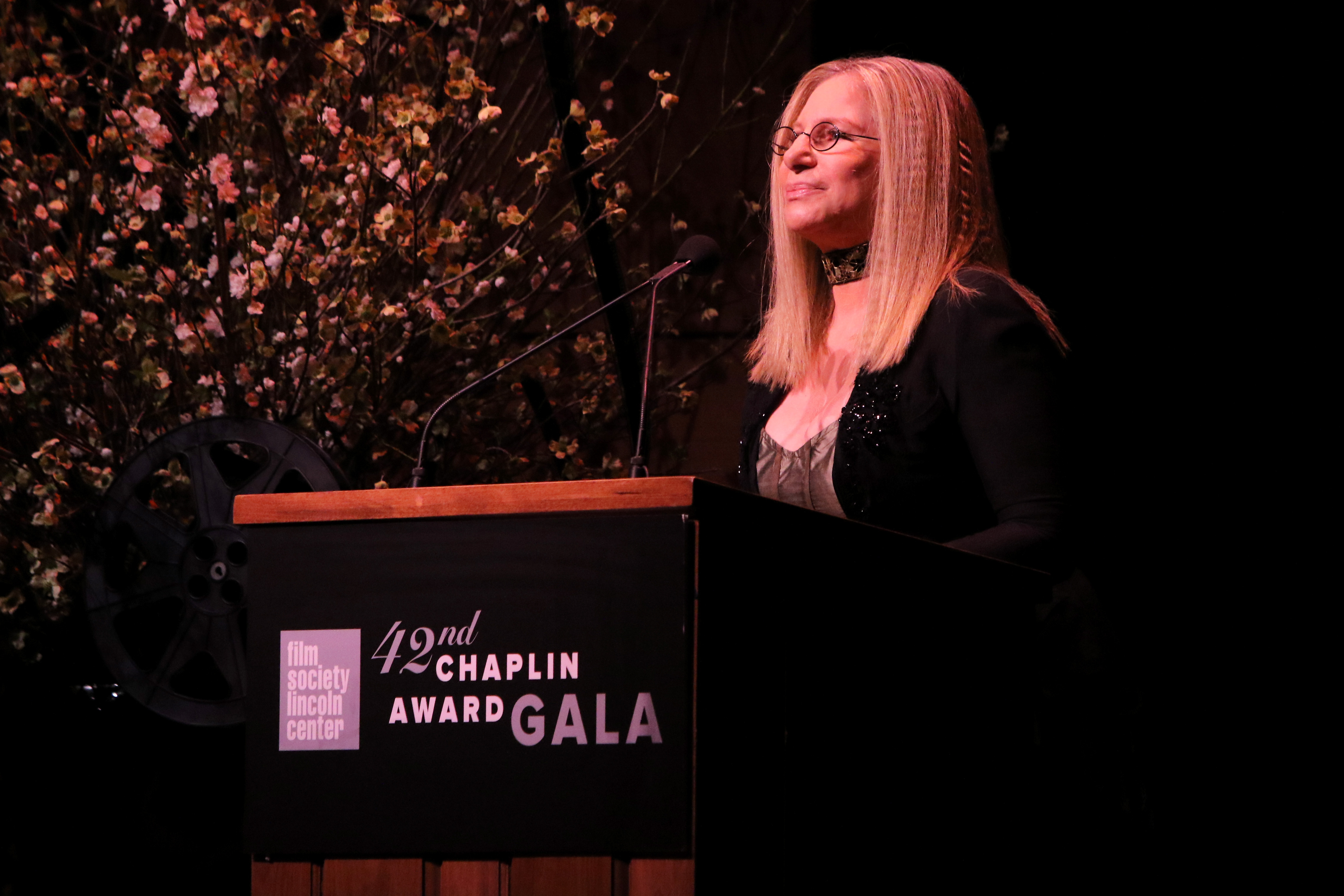 NEW YORK, NY - APRIL 27:  (EXCLUSIVE COVERAGE) Barbra Streisand speaks onstage at the 42nd Chaplin Award Gala at Alice Tully Hall, Lincoln Center on April 27, 2015 in New York City.  (Photo by Jim Spellman/WireImage)
