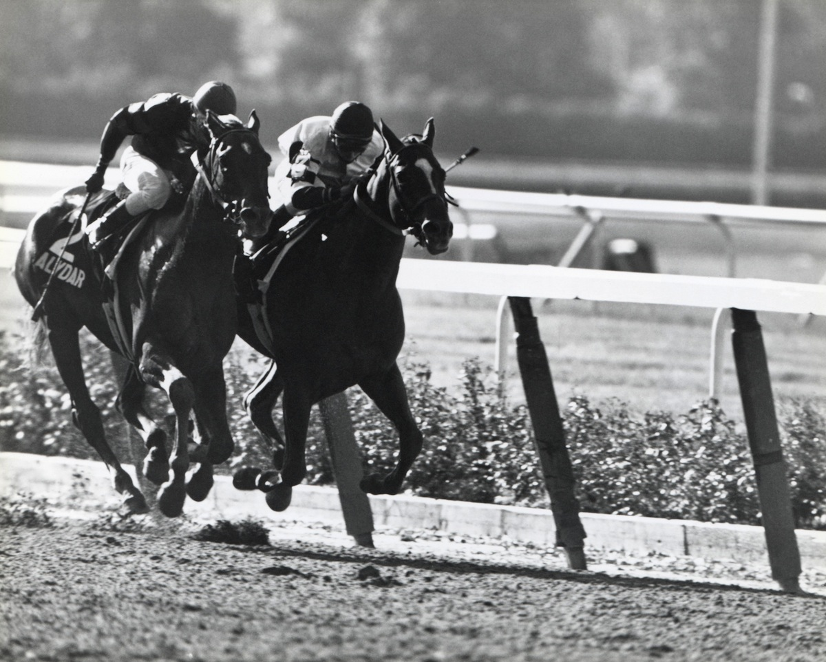 Jockey Steve Cauthen rides Affirmed #3 as Jorge Velasquez tries to pull Alydar #2 into first place during the Belmont Stakes on June 10, 1978, at Belmont Park in Elmont, N.Y.