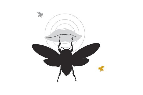 bee sayings stung lips