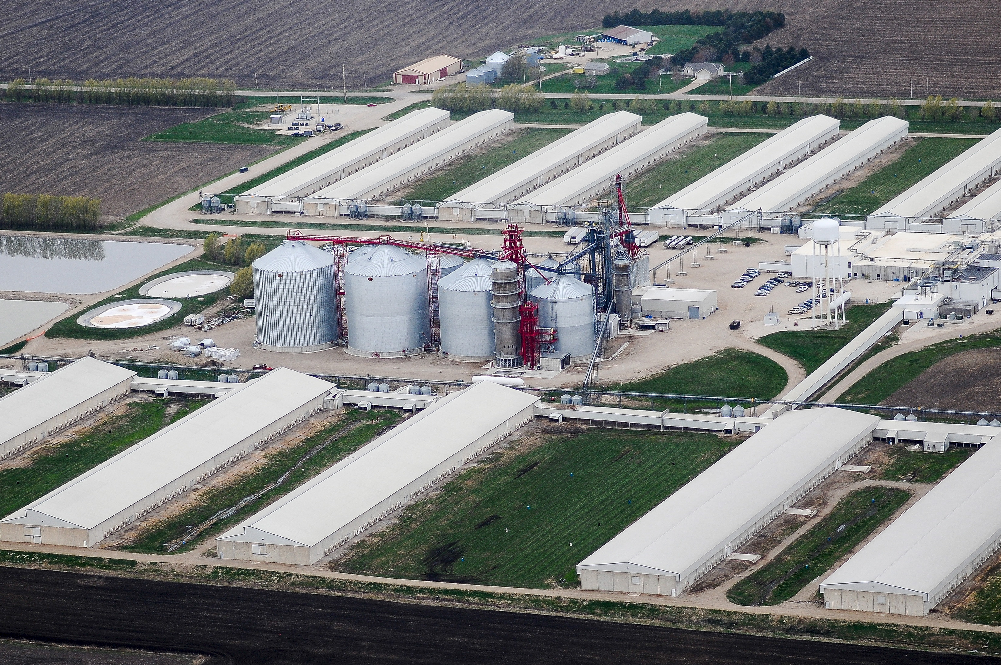 An egg-producing chicken farm run by Sunrise Farm is seen in Harris, Iowa on April 23, 2015. Iowa, the top U.S. egg-producing state, found a lethal strain of bird flu in millions of hens at an egg-laying facility on Monday, the worst case so far in a national outbreak that prompted Wisconsin to declare a state of emergency. The infected Iowa birds were being raised near the city of Harris by Sunrise Farms, an affiliate of Sonstegard Foods Company, the company said.