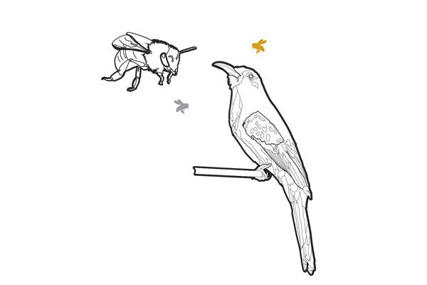 bee sayings birds bees