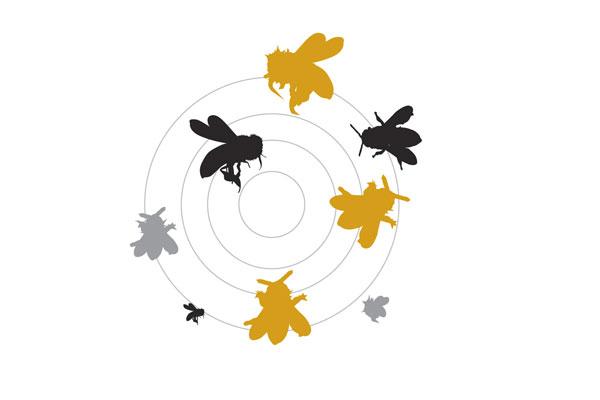 bee sayings busy bee