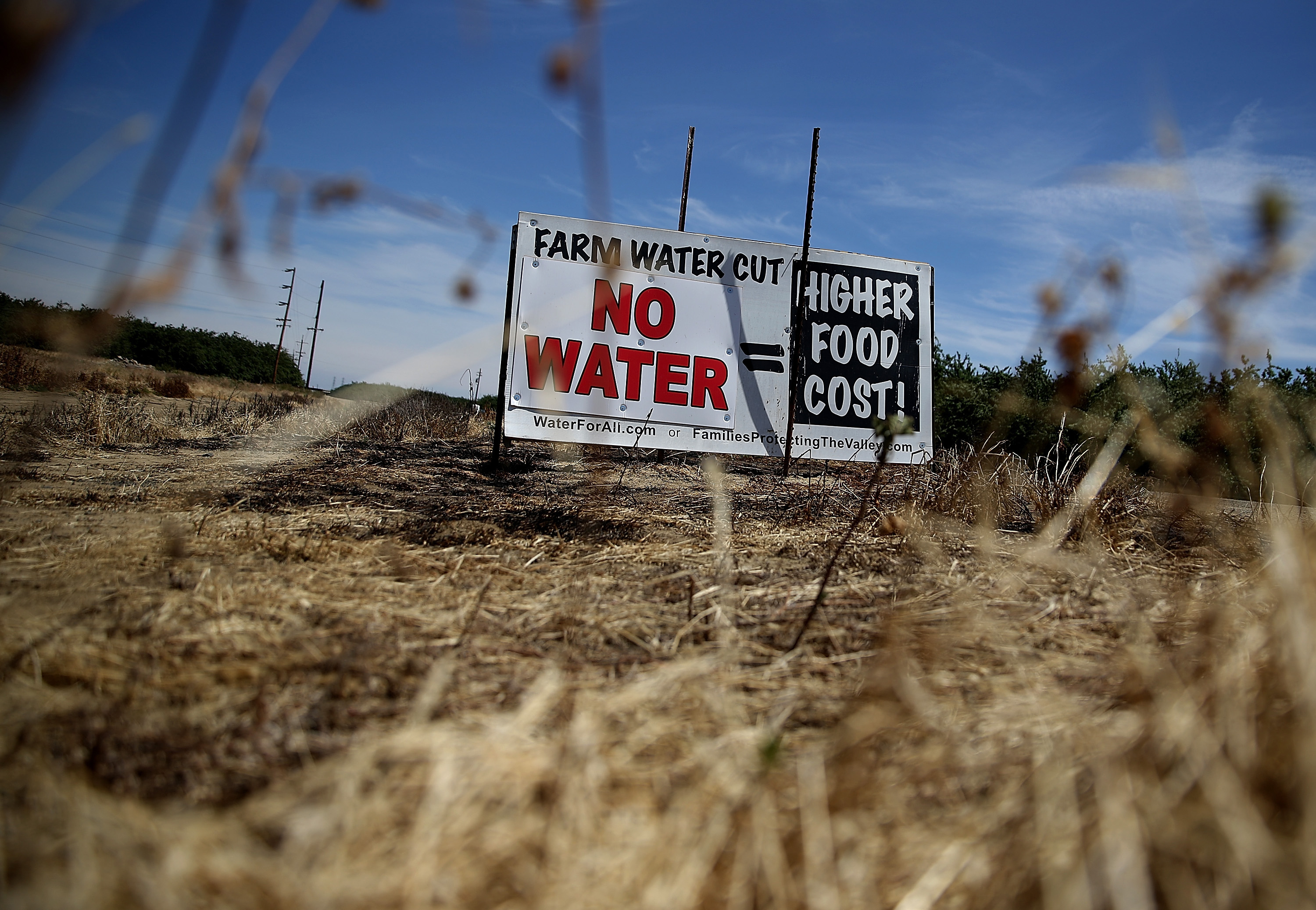 A sign referencing the drought is posted on the side of the road on April 24, 2015 in Firebaugh, California.