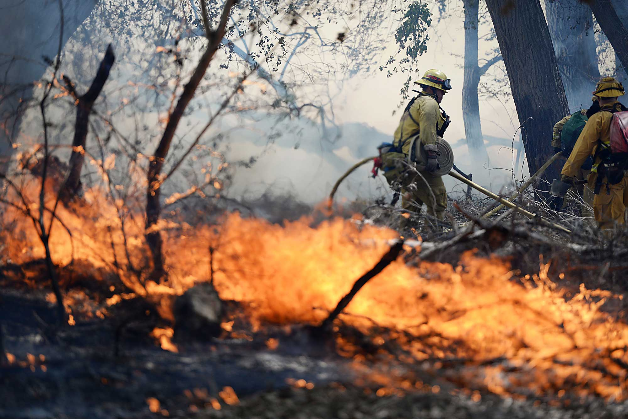 Firefighters battle a wildfire in The Mojave Narrows Regional Park in Victorville Calif., March 31, 2015.