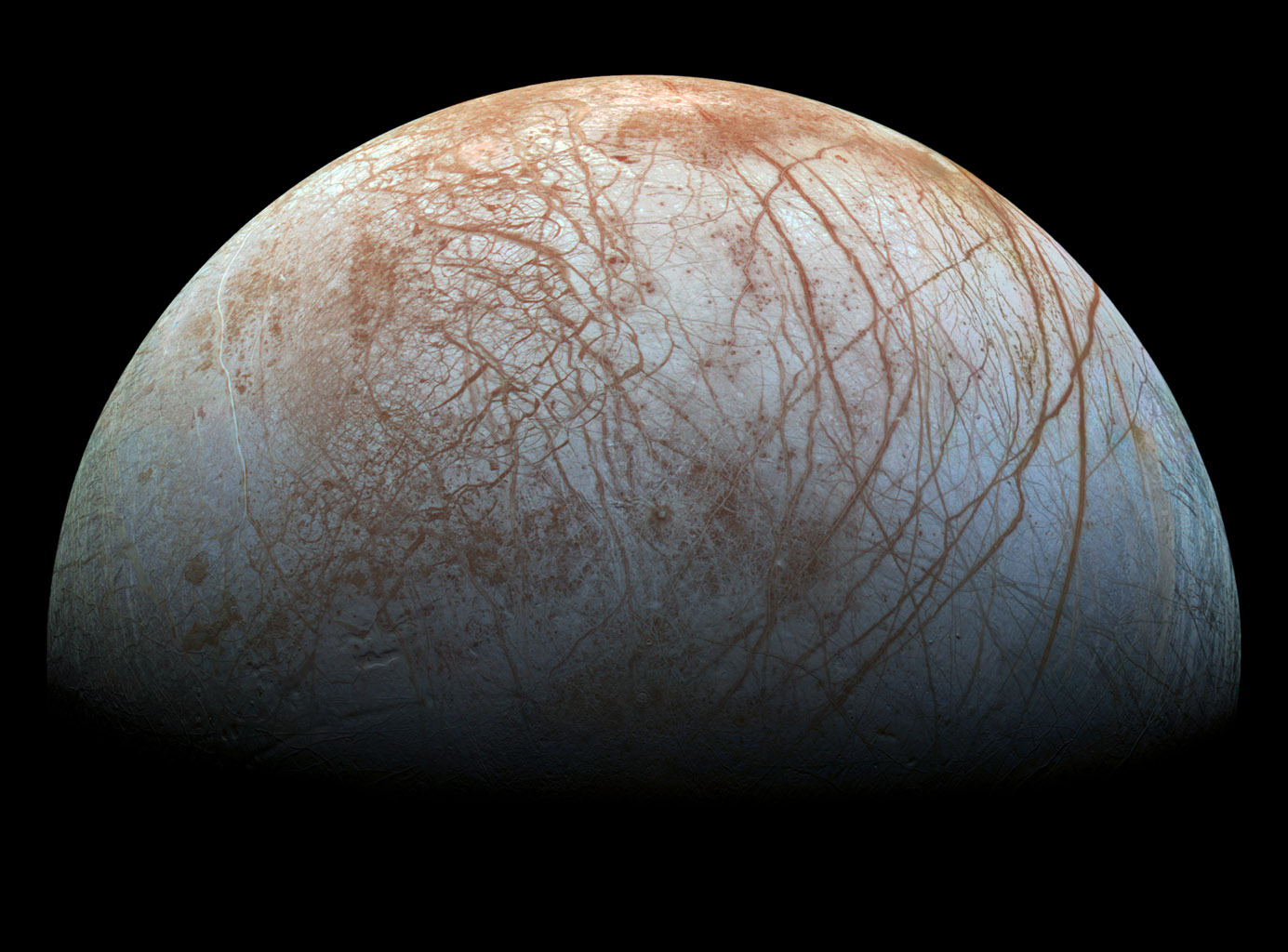 A different kind of Europeans: The discolored cracks of the Jovian moon Europa could suggest life