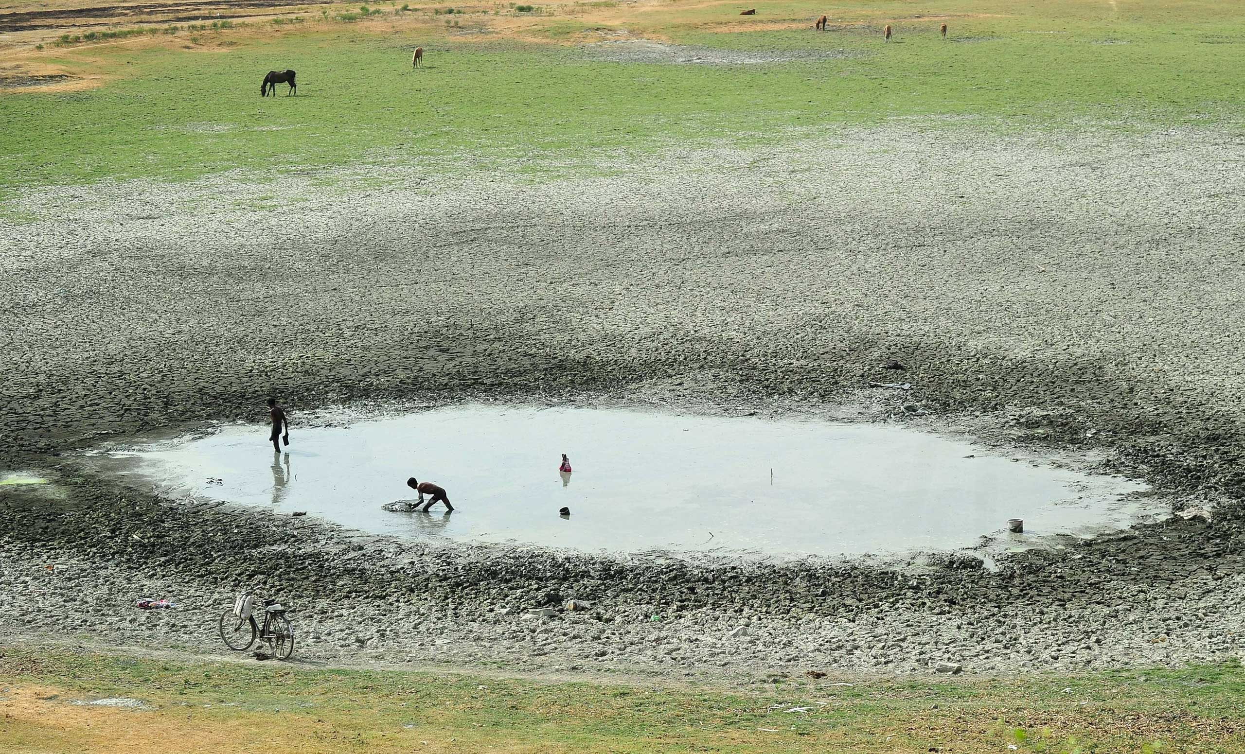 Indian fishermen catch fish in a shrunken pond in the village of Phaphamau on the outskirts of Allahabad on May 26, 2015.