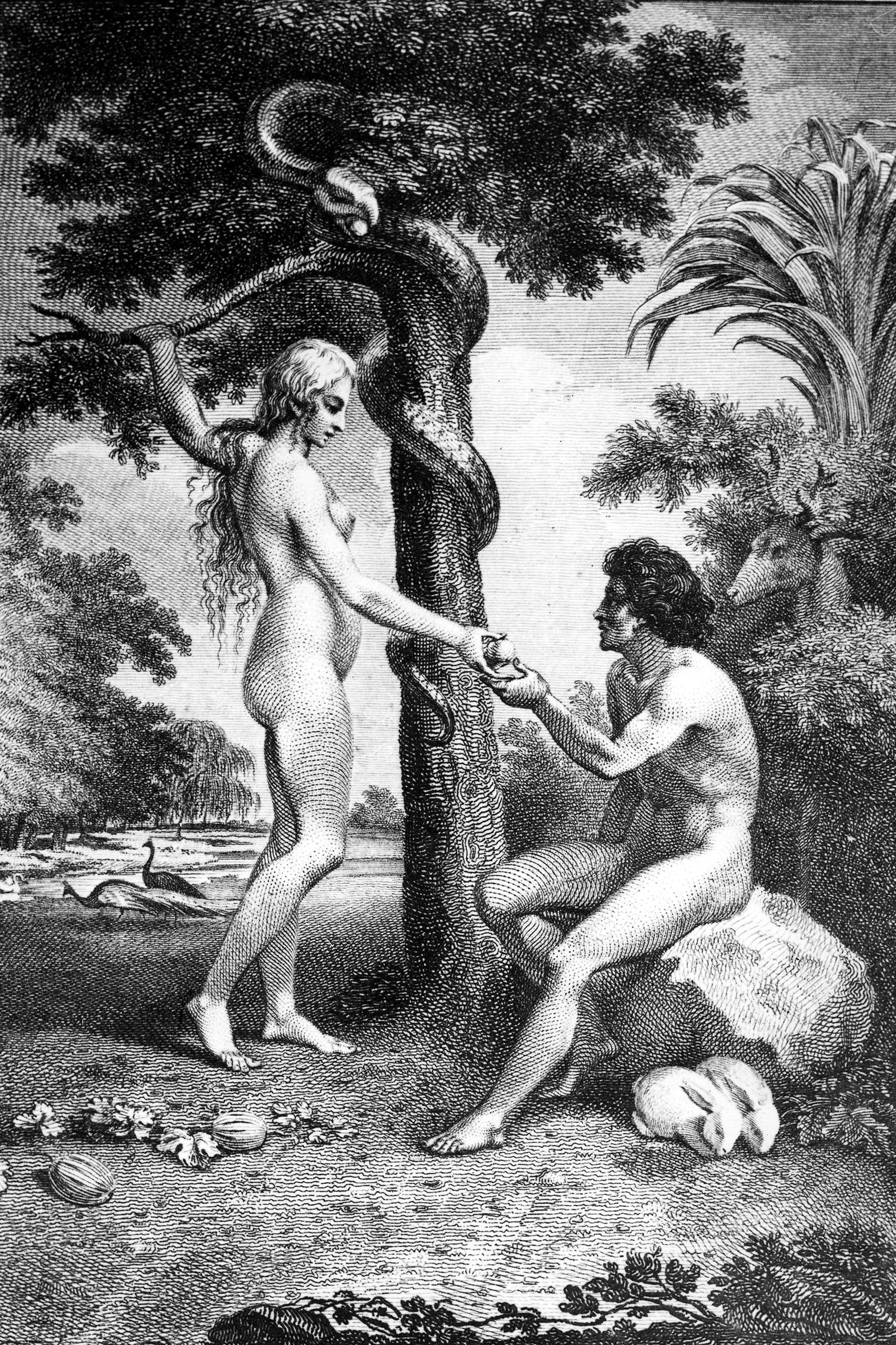Classic Collection. Page 118. 10418653. A Biblical illustration showing Eve tempting Adam with the apple in the Garden of Eden.
