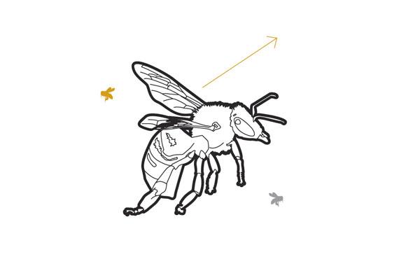 bee sayings beeline