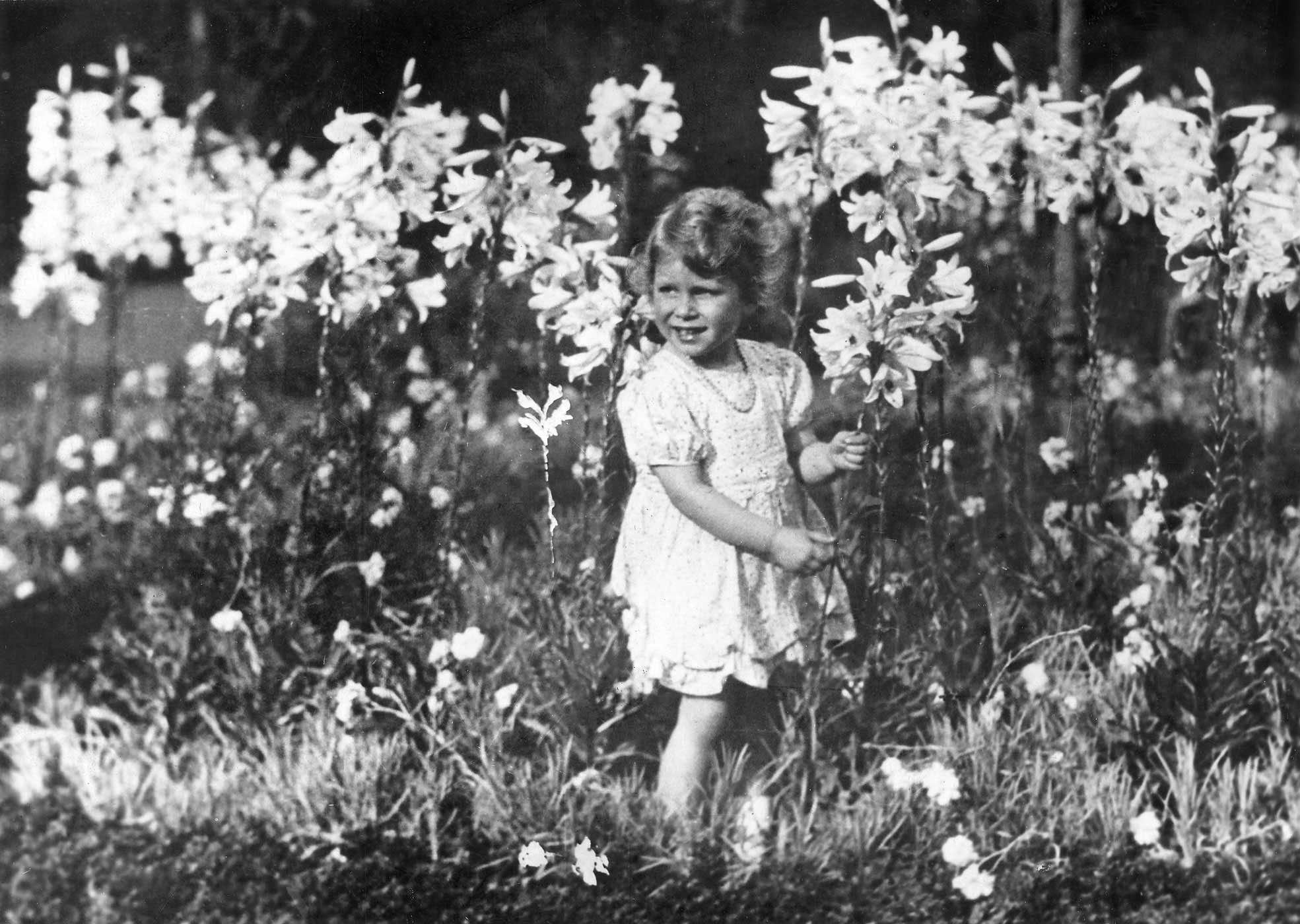 Elizabeth stands in a field picking flowers circa 1930. As the eldest child, Elizabeth, often called Lilibet by her family, was treasured among family members, including her father, who snapped this photo.