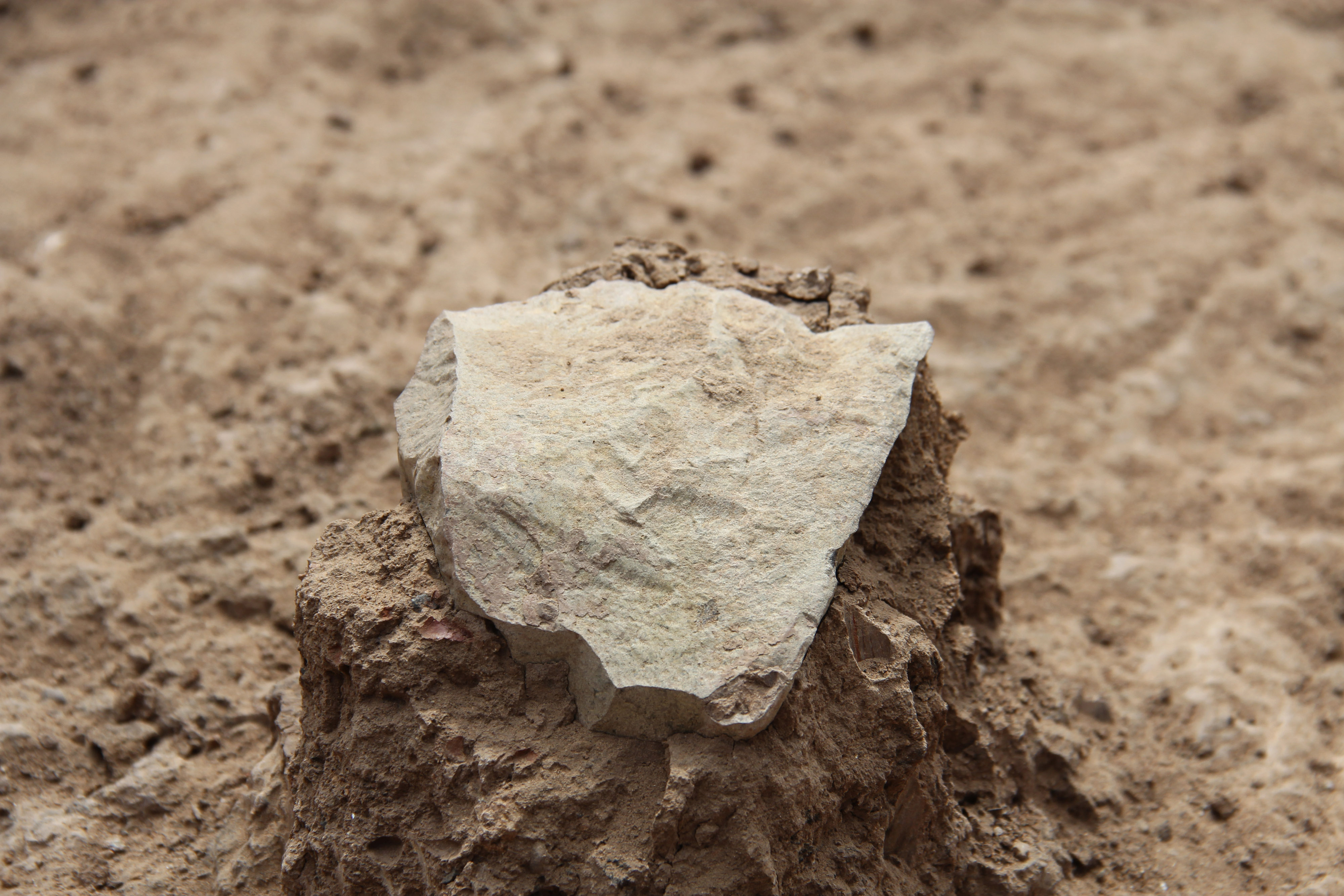 This undated photo made available May 20, 2015 by the Mission Prehistorique au Kenya - West Turkana Archaeological Project shows the excavation of a stone tool found in the West Turkana area of Kenya.