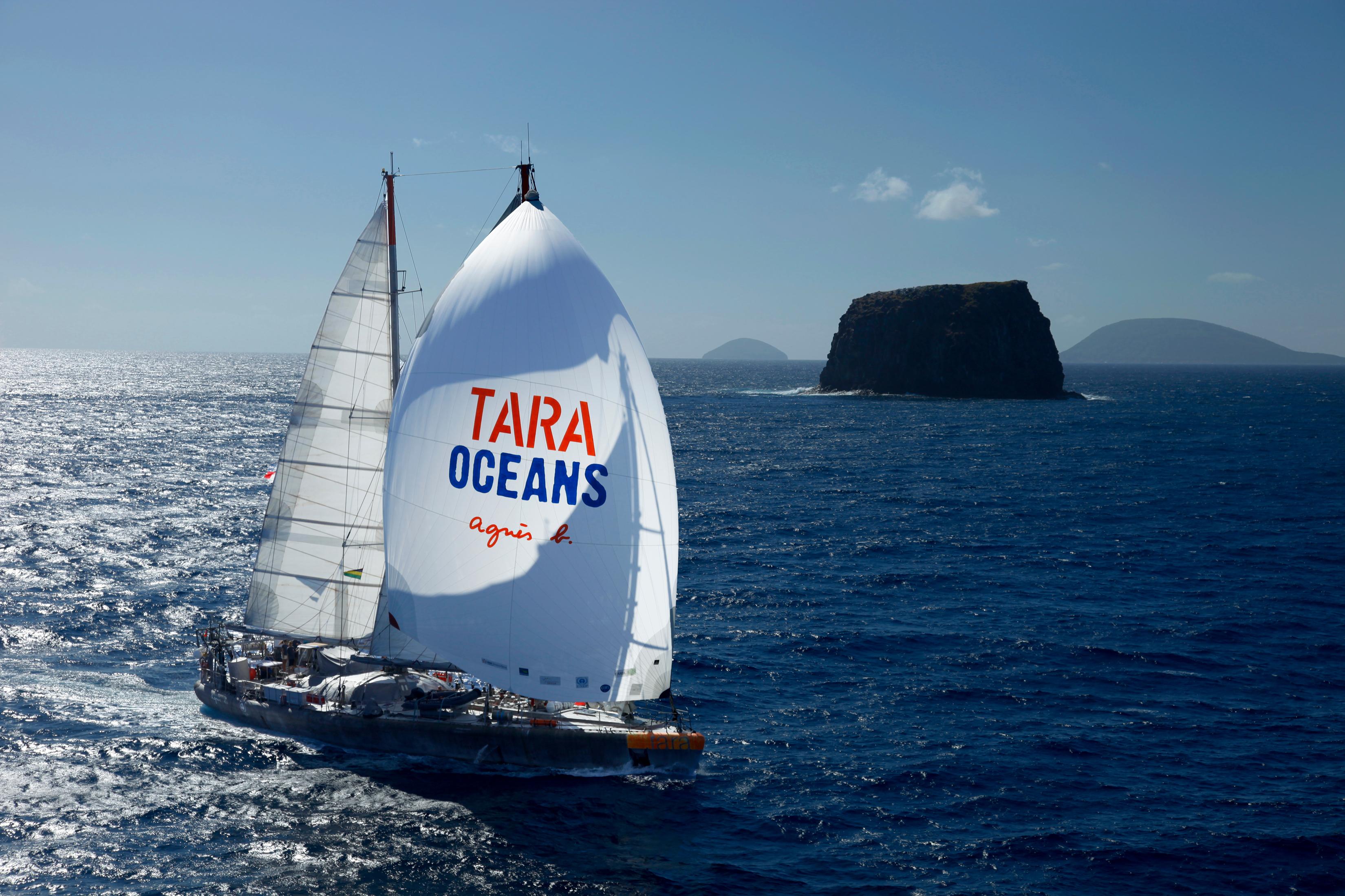 The Tara ship at sea.