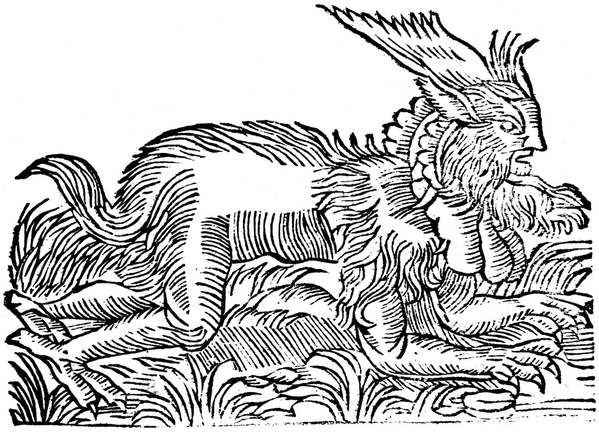 Illustration of a forest demon said to be captured in Germany in 1531, which could have given rise to the werewolf legend