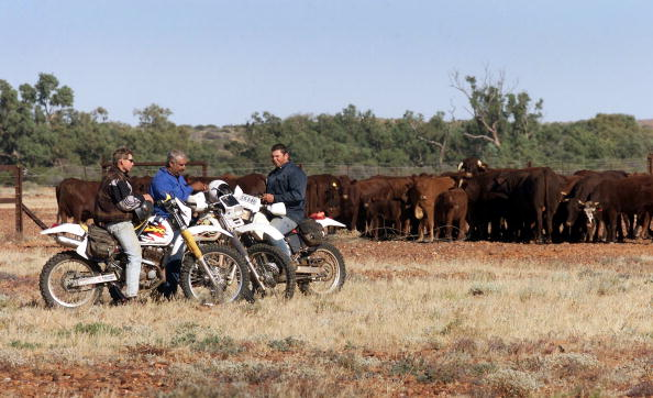 Workers from the Anna Creek cattle station take a break on the Oodnadatta Track in outback South Australia as they start the mustering of cattle by motorbike and plane on June 20, 2000