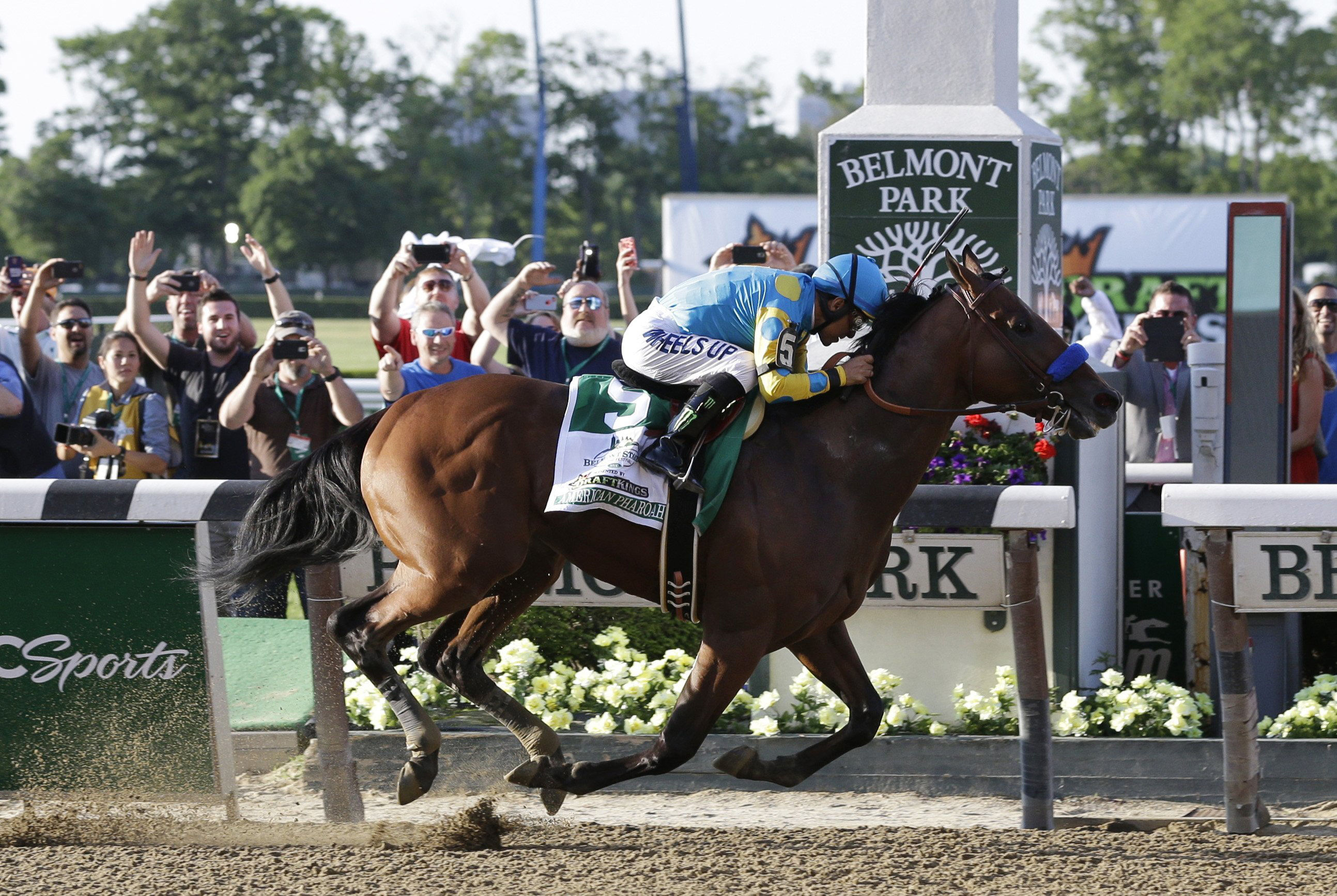 American Pharoah (5) with Victor Espinoza crosses the finish line to win the 147th running of the Belmont Stakes horse race at Belmont Park, June 6, 2015, in Elmont, N.Y.