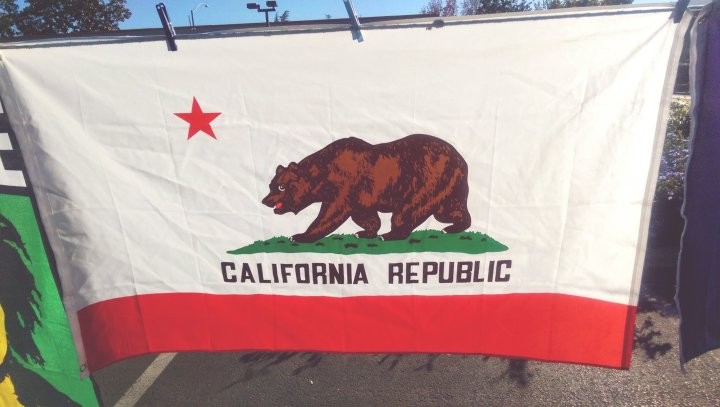 Close Up Of California Republic Flag