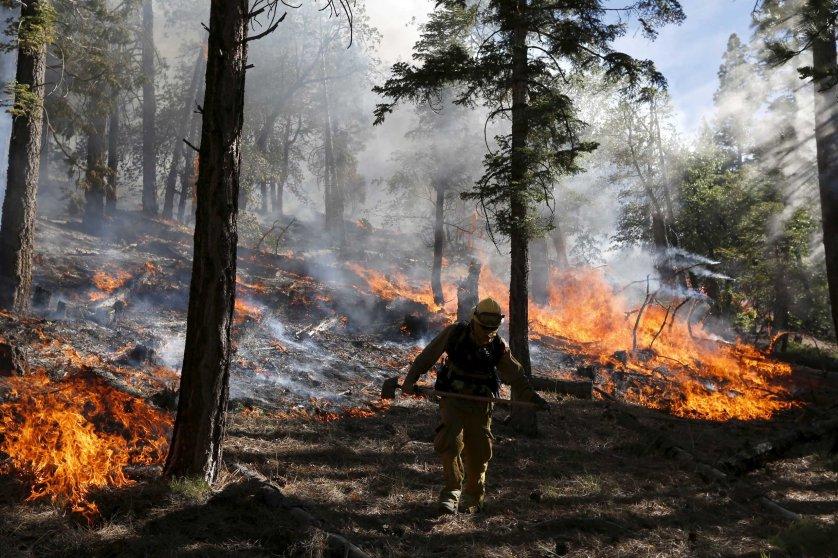 California Wildfire Lake Fire San Bernardino