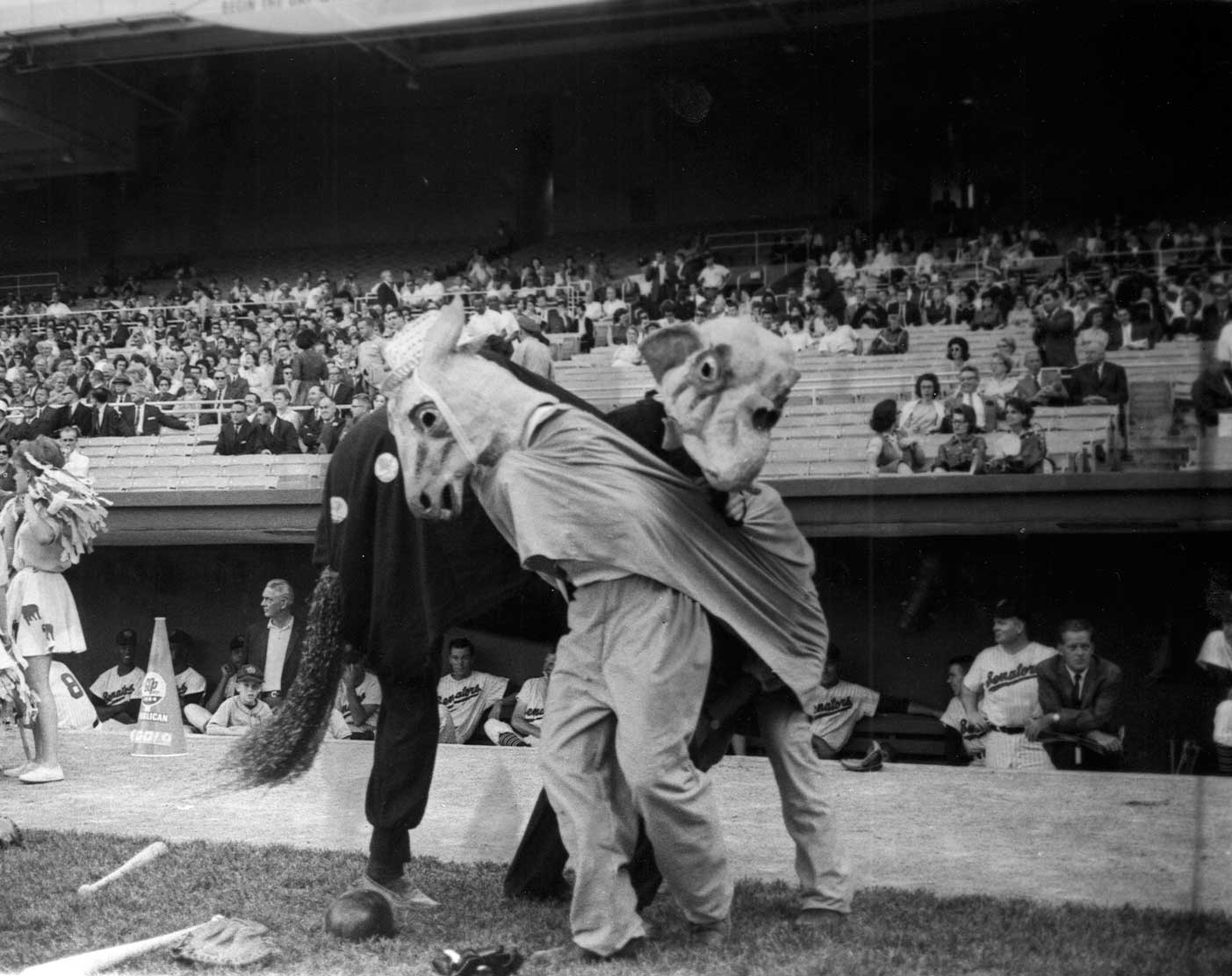 """The mascots for the Republicans, an elephant, and the Democrats, a donkey, have a """"fight"""" during the Congressional Baseball Game of 1964 in Washington."""