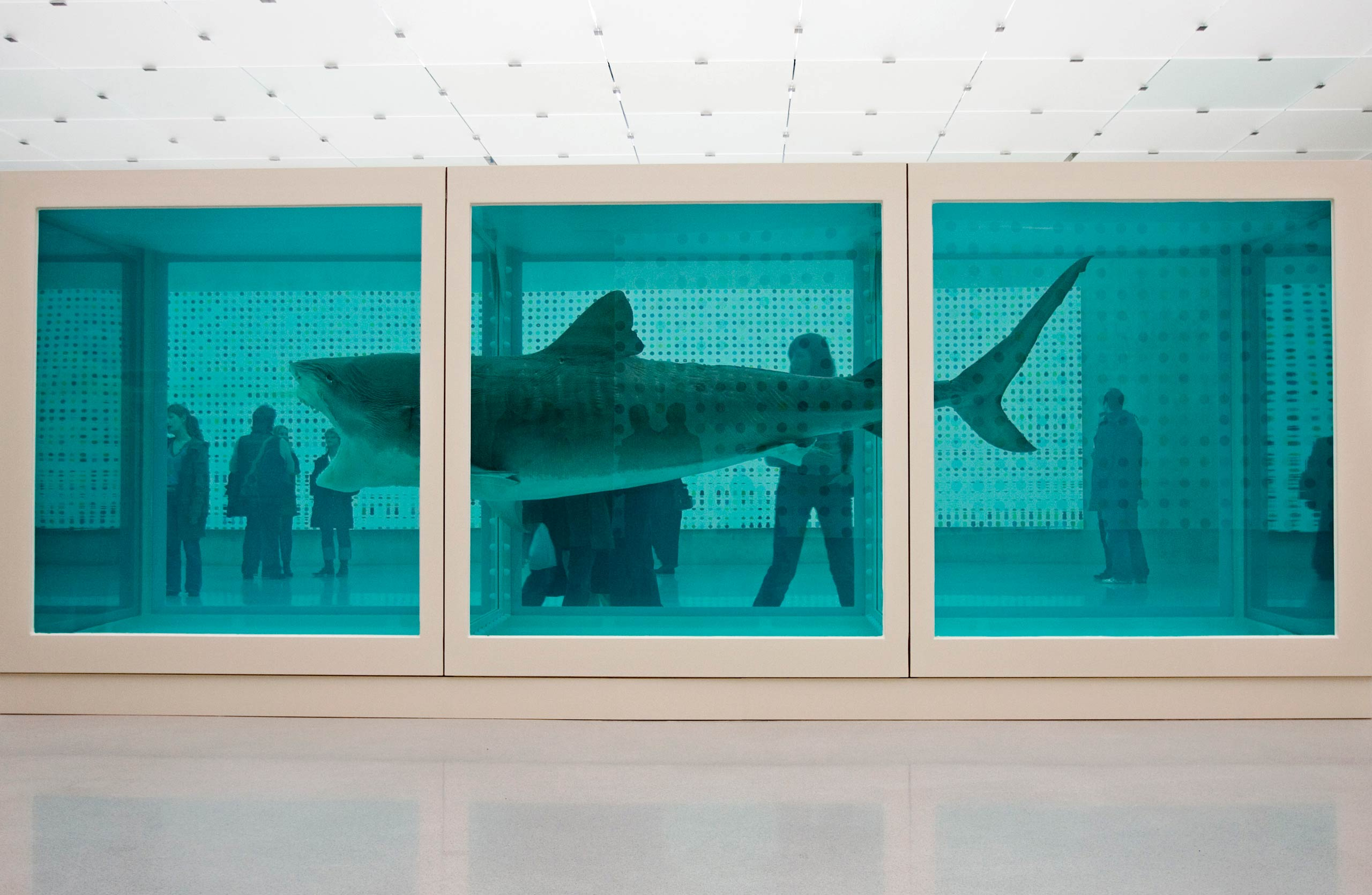 Perhaps Hirst's most famous work,  The Physical Impossibility of Death in the Mind of Someone Living  (1991) consists of a tiger shark preserved in formaldehyde.