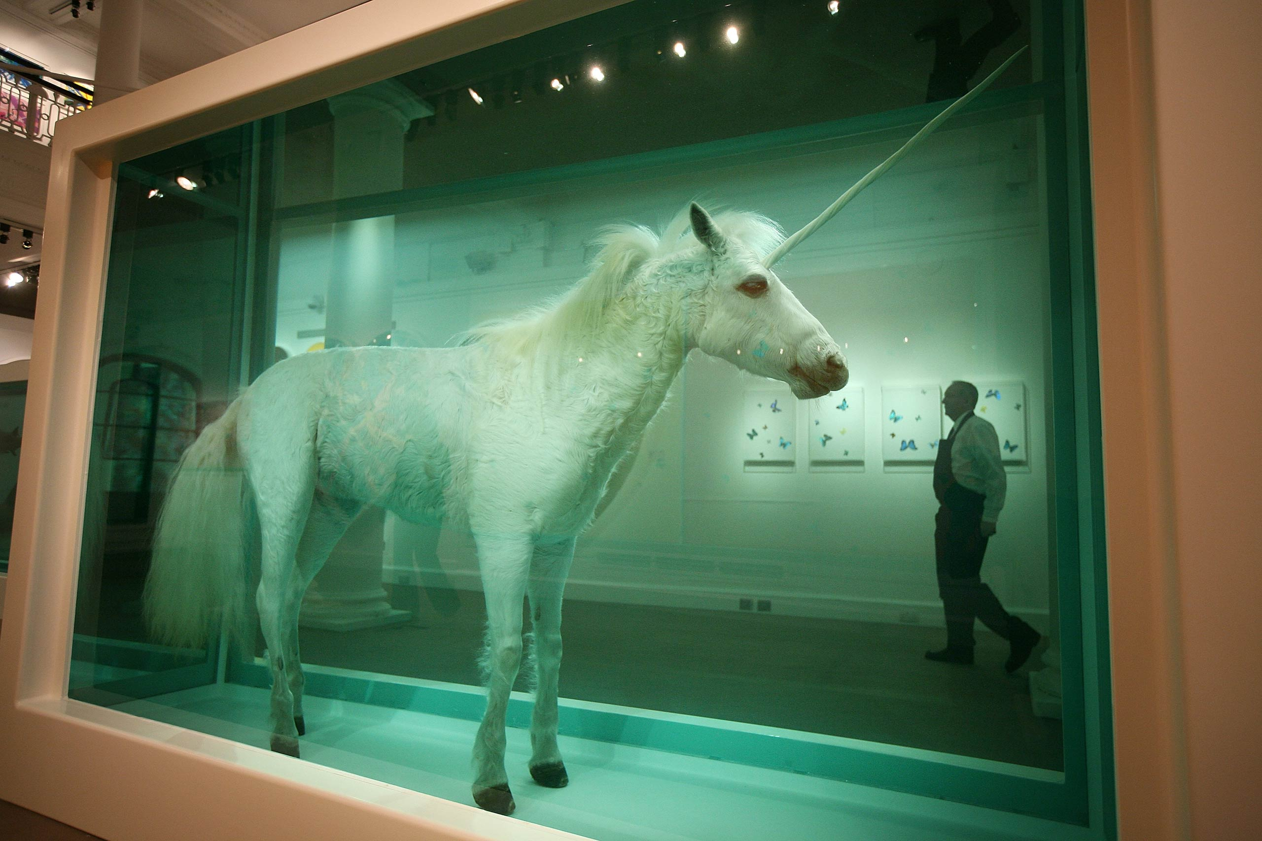Similar to the shark work,  The Dream  (2008) preserves a horse with a unicorn's horn.