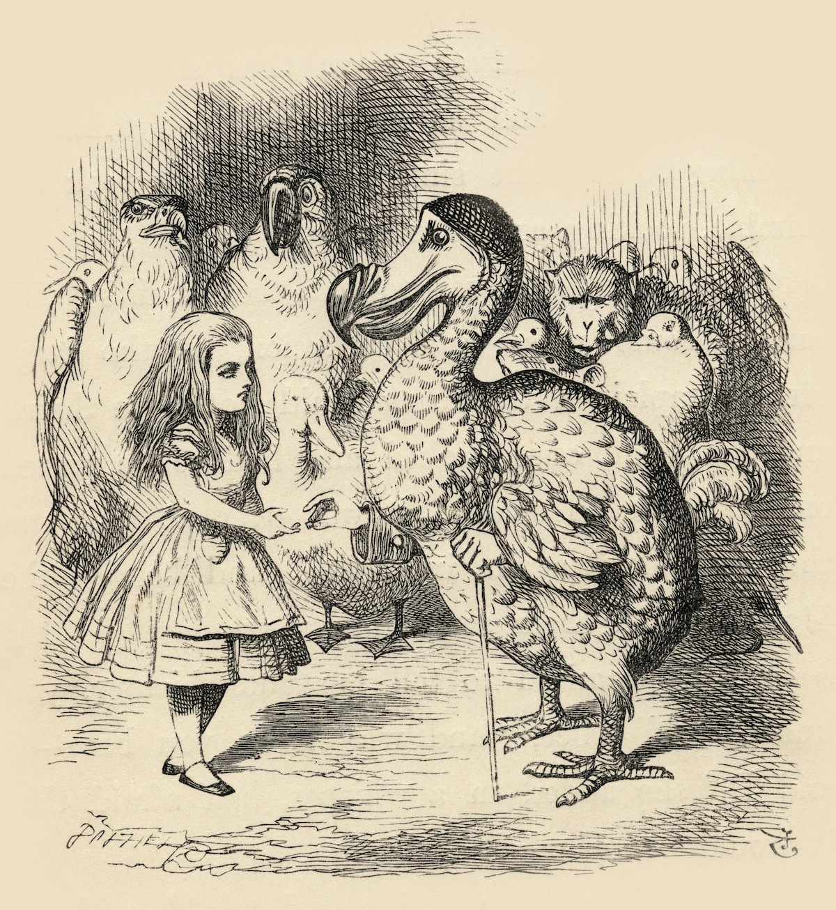 The Dodo solemnly presents Alice with a thimble Illustration by John Tenniel from the book Alices's Adventures in Wonderland by Lewis Carroll