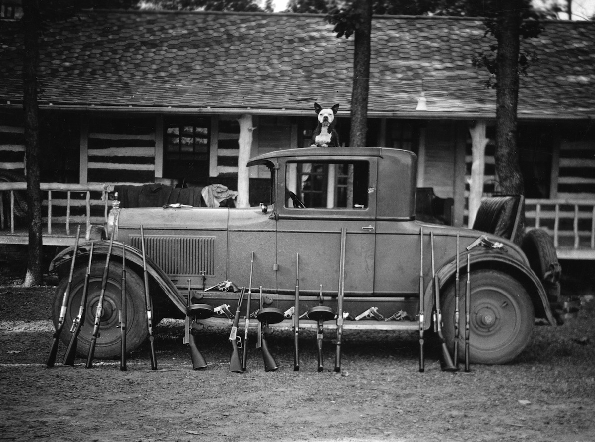 A dog sits atop a vehicle belonging to the Birger Gang of southern Illinois, ca.1920s