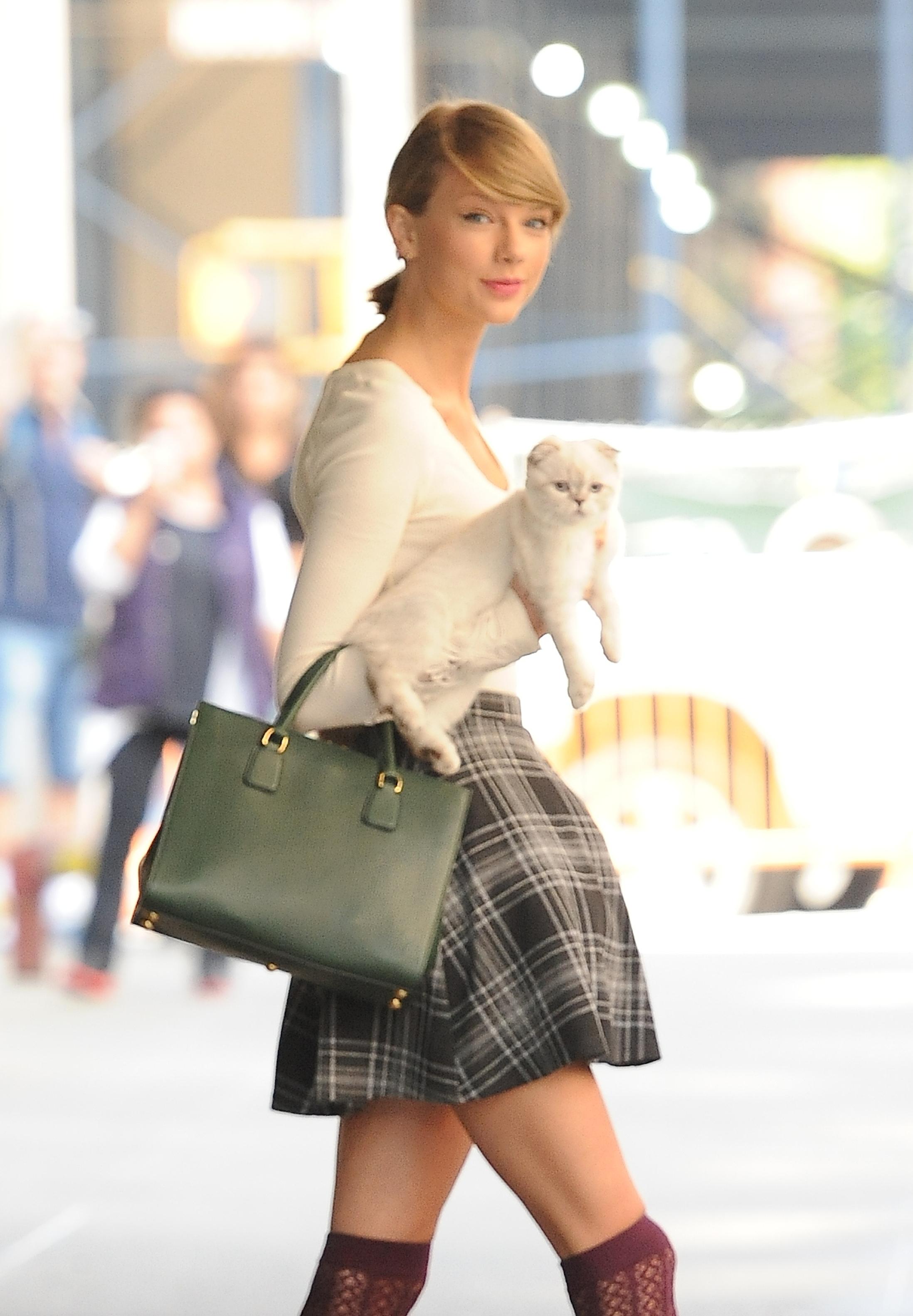 Mariska Hargitay Met Taylor Swift's Cat Olivia Benson | Time.com
