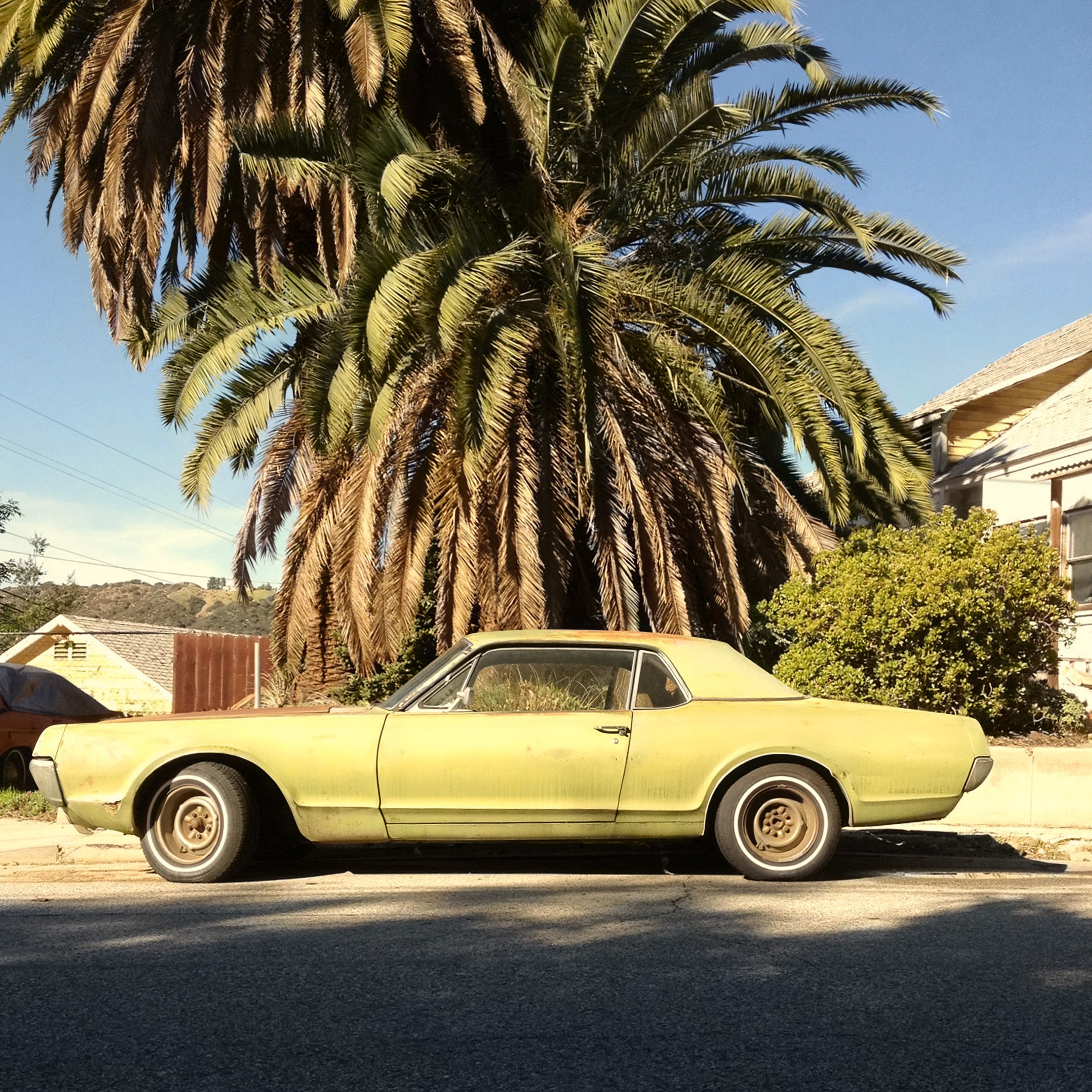 Giving Tree, 2014.                                I've always liked the idea of photography as a hunt for hidden treasure, and L.A.'s horizontal layout makes for a virtually endless and ever-changing treasure map of transient landscapes and urban decay. This photograph underscores a recurring theme in my observations of the city - the latent humor in the everyday —Dan Lopez