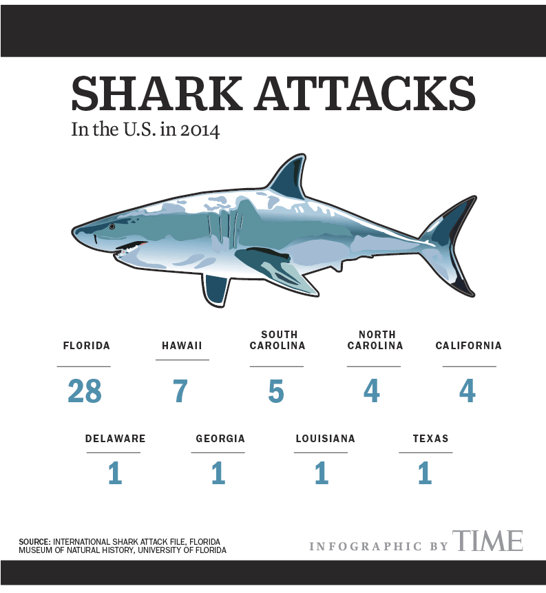 North Carolina Shark Attack Shark Week Here S Where Bites Occur