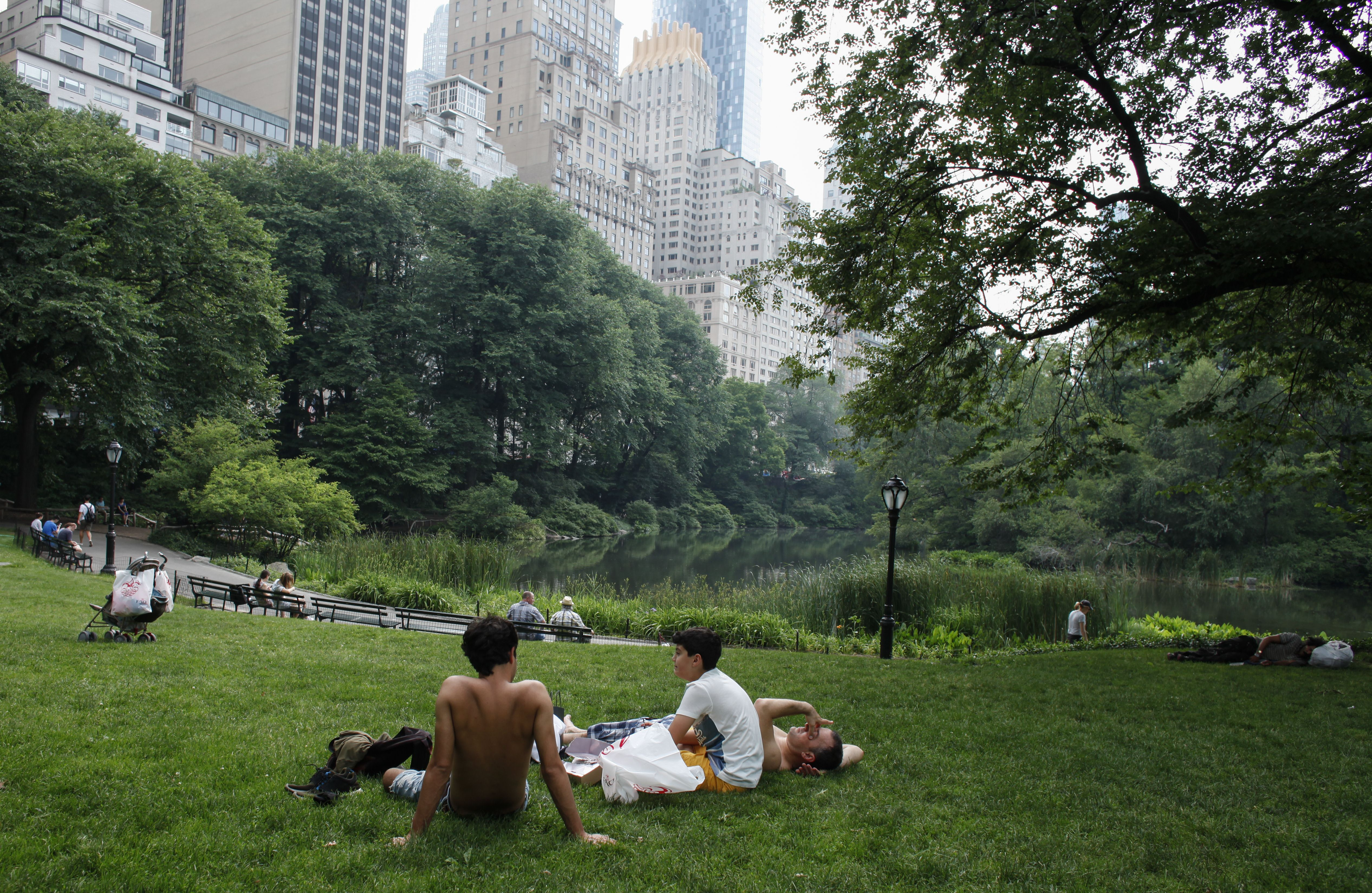 People gather in in Central Park as temperatures in Manhattan hit 90 degrees F (32C) for the first time in 2015, in New York City on June 11, 2015.