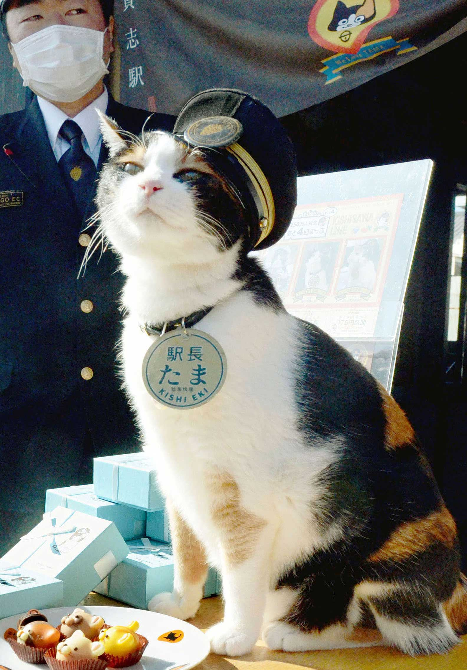 Tama, a cat stationmaster of a railway station in western Japan, attends an event at her Kishi Station in Wakayama Prefecture, Japan in Jan., 2013.
