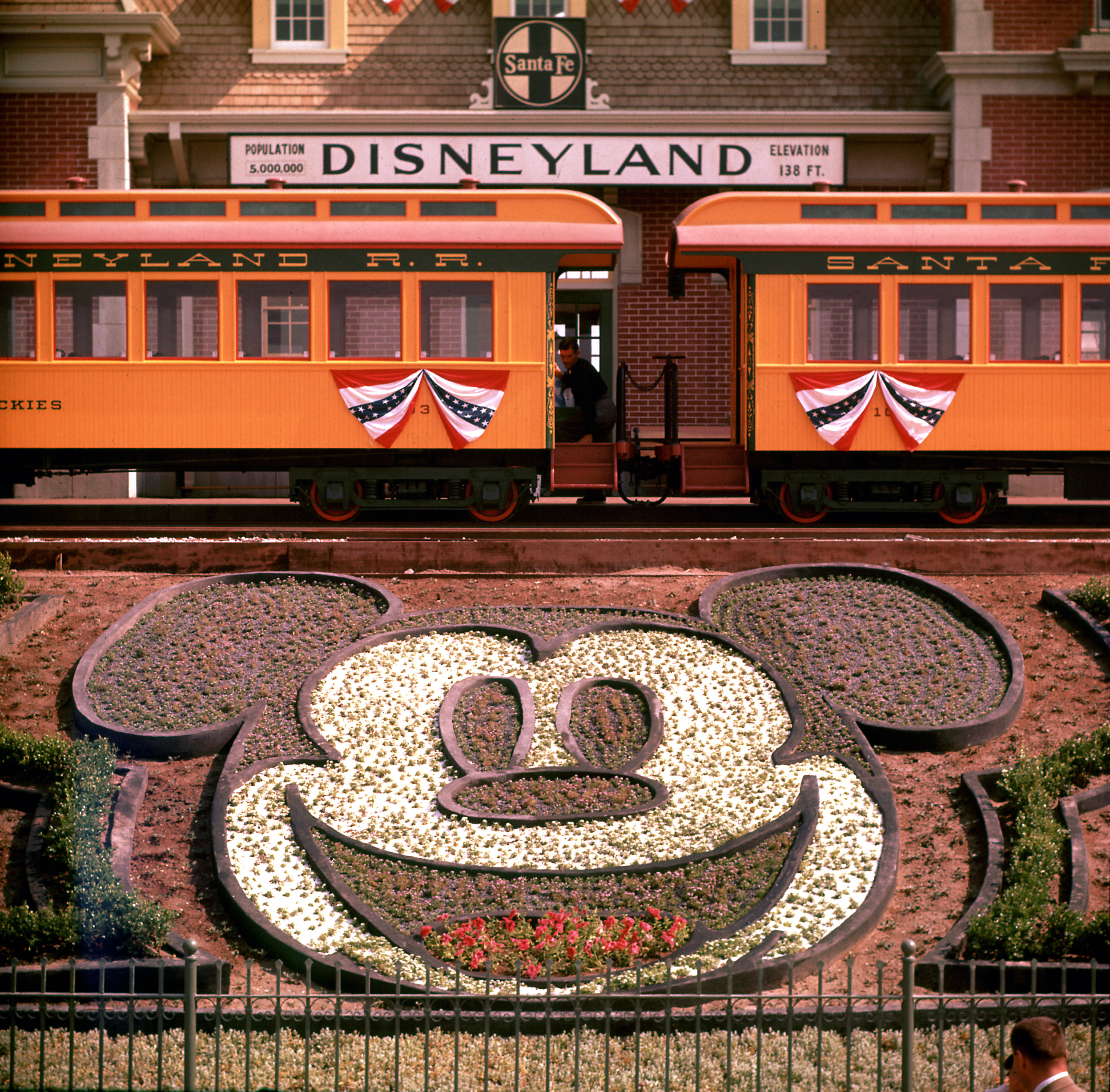 Planted flowers forming design of Mickey Mouse's face, with Disneyland train in background, 1955.