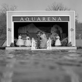 The Aquarena in San Marcos Texas, where underwater weddings are performed.