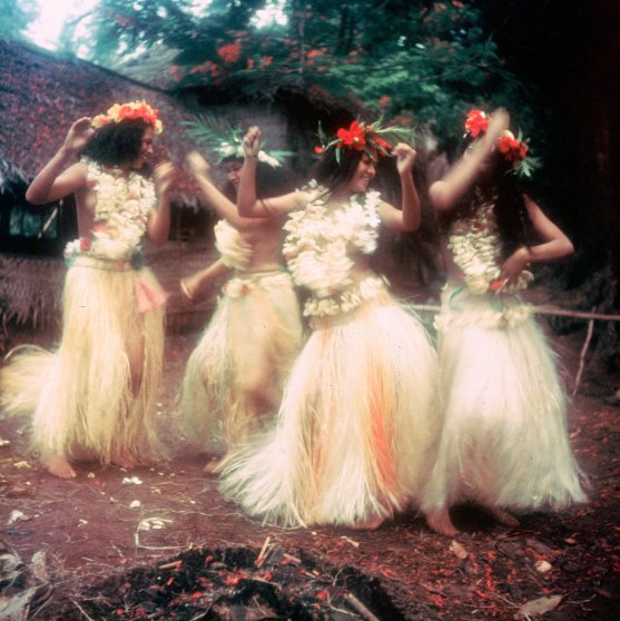 Girls in frangipani blossoms swirling in a frenzied dance.