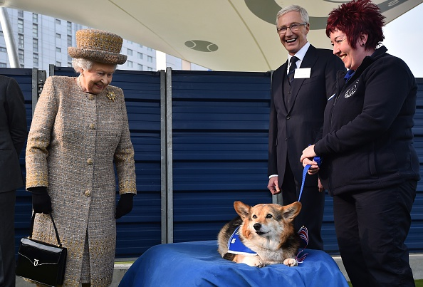 Britain's Queen Elizabeth II looks at a Corgi dog as British television presenter Paul O'Grady looks on during a visit to Battersea Dogs and Cats Home in London on March 17, 2015