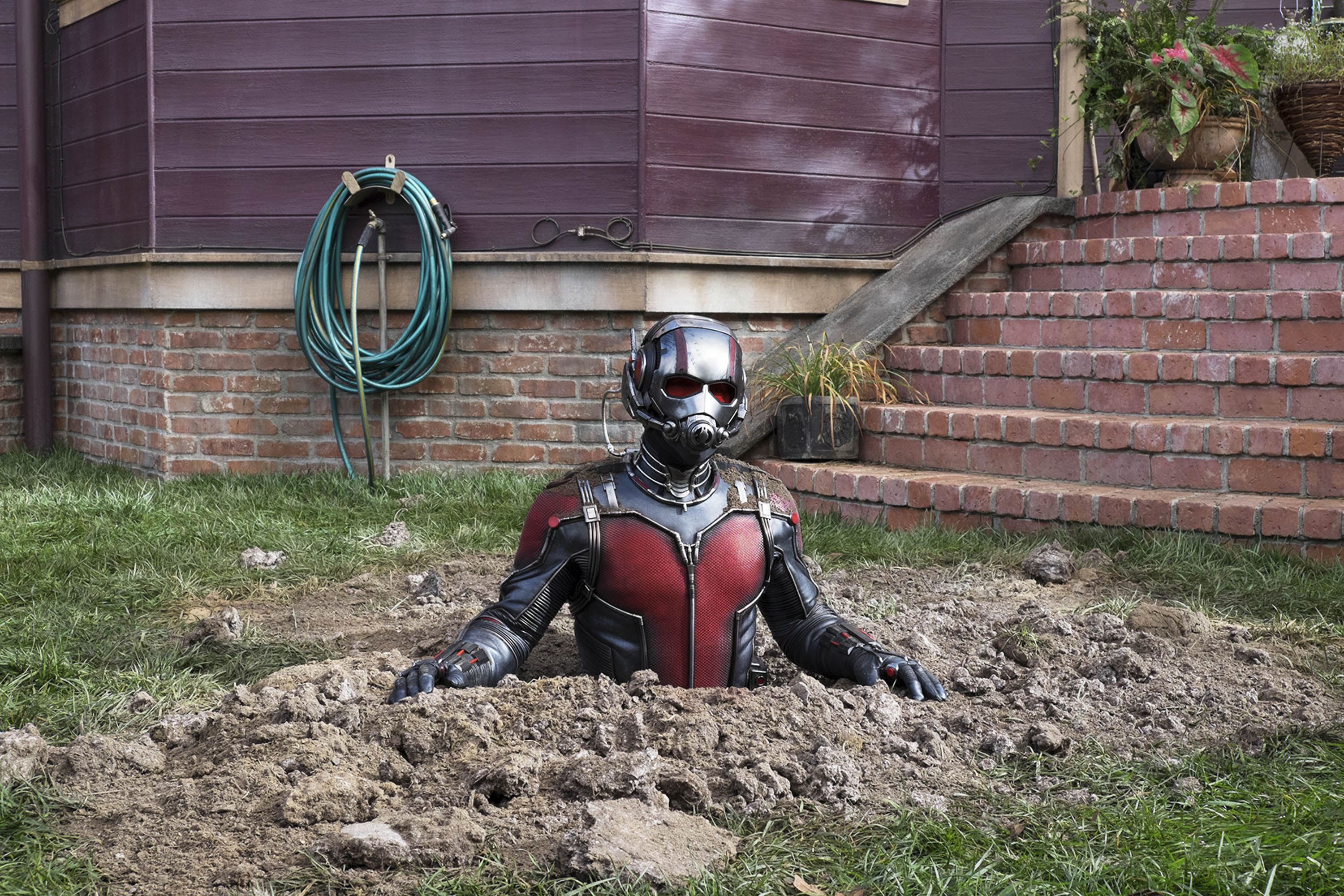 As its least noble superhero, Paul Rudd's Ant-Man brings warmth and pathos to the Marvel universe.