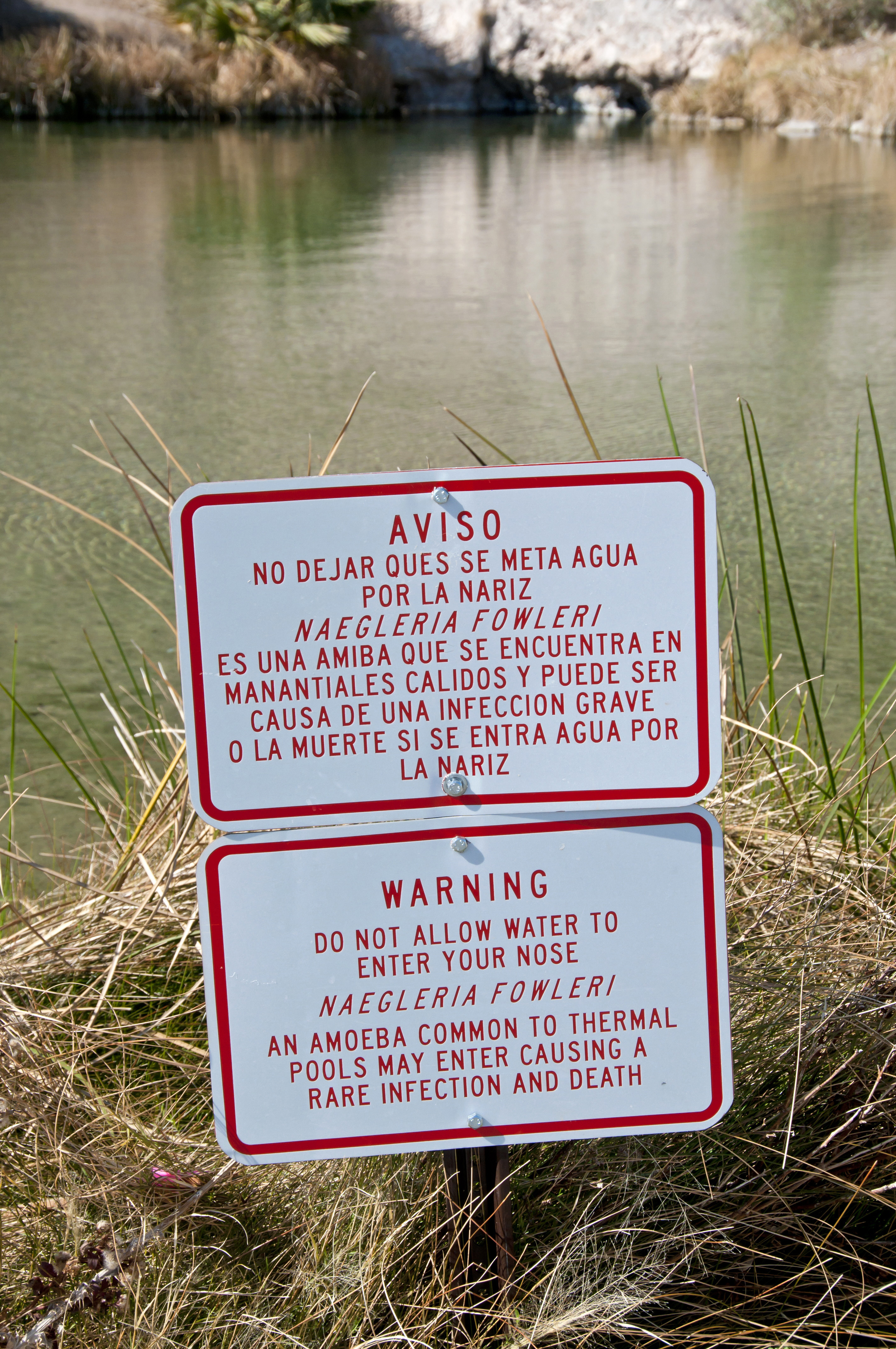 'Do Not Allow Water To Enter Your Nose' Amoeba (Naegleria fowleri) warning sign at thermal pool, Roger's Spring, Lake Mead, Nevada, U.S.A.