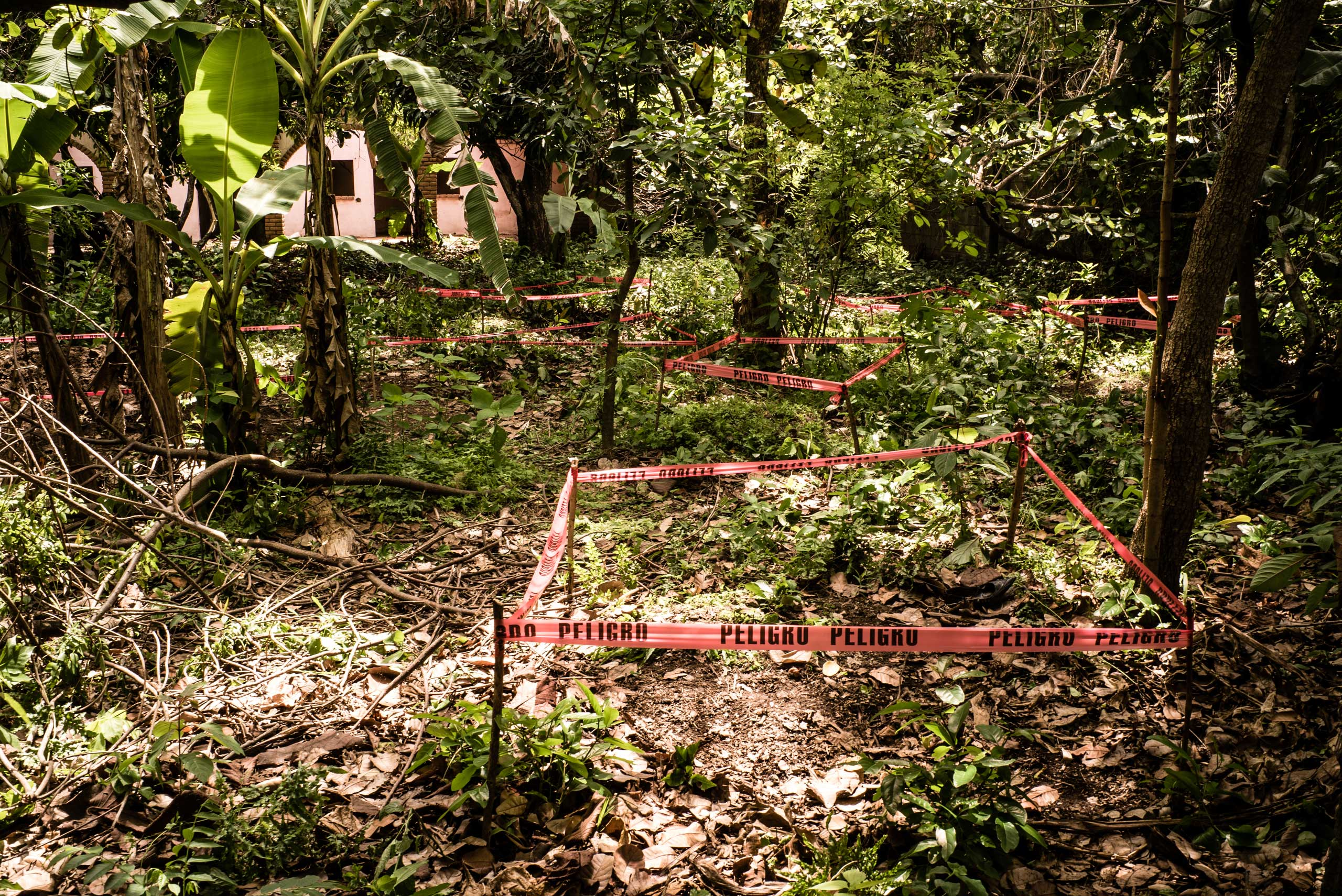 Graves behind a                                house used by                                gang members                                in Lourdes, a                                district close to                                San Salvador, on June 1, 2015.