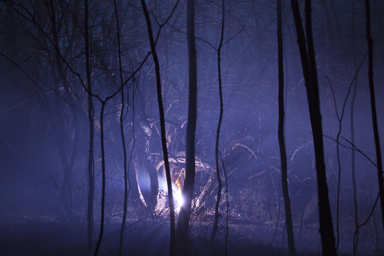 Burned Over #5, 2012