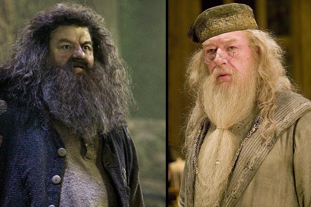 Hagrid Dumbledore Harry Potter