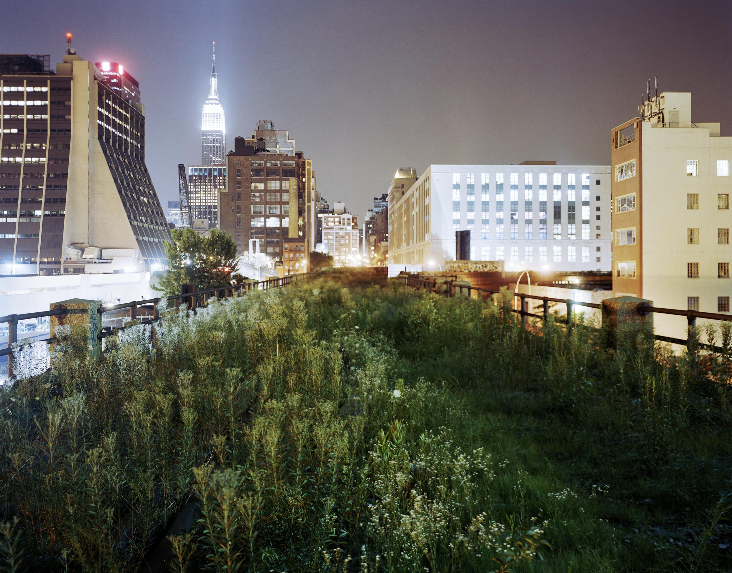 The Highline: Above 34th Street Eastward, 2004