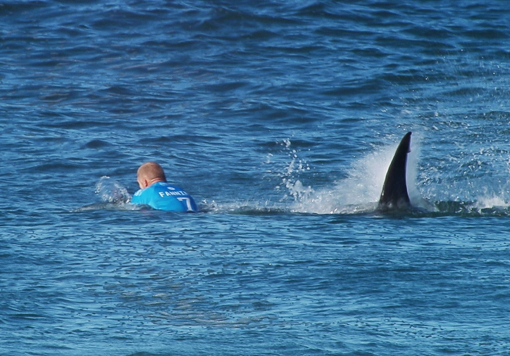 In this image made available by the World Surf League, Australian surfer Mick Flanning is pursued by a shark, in Jeffrey's Bay, South Africa on July 19, 2015.