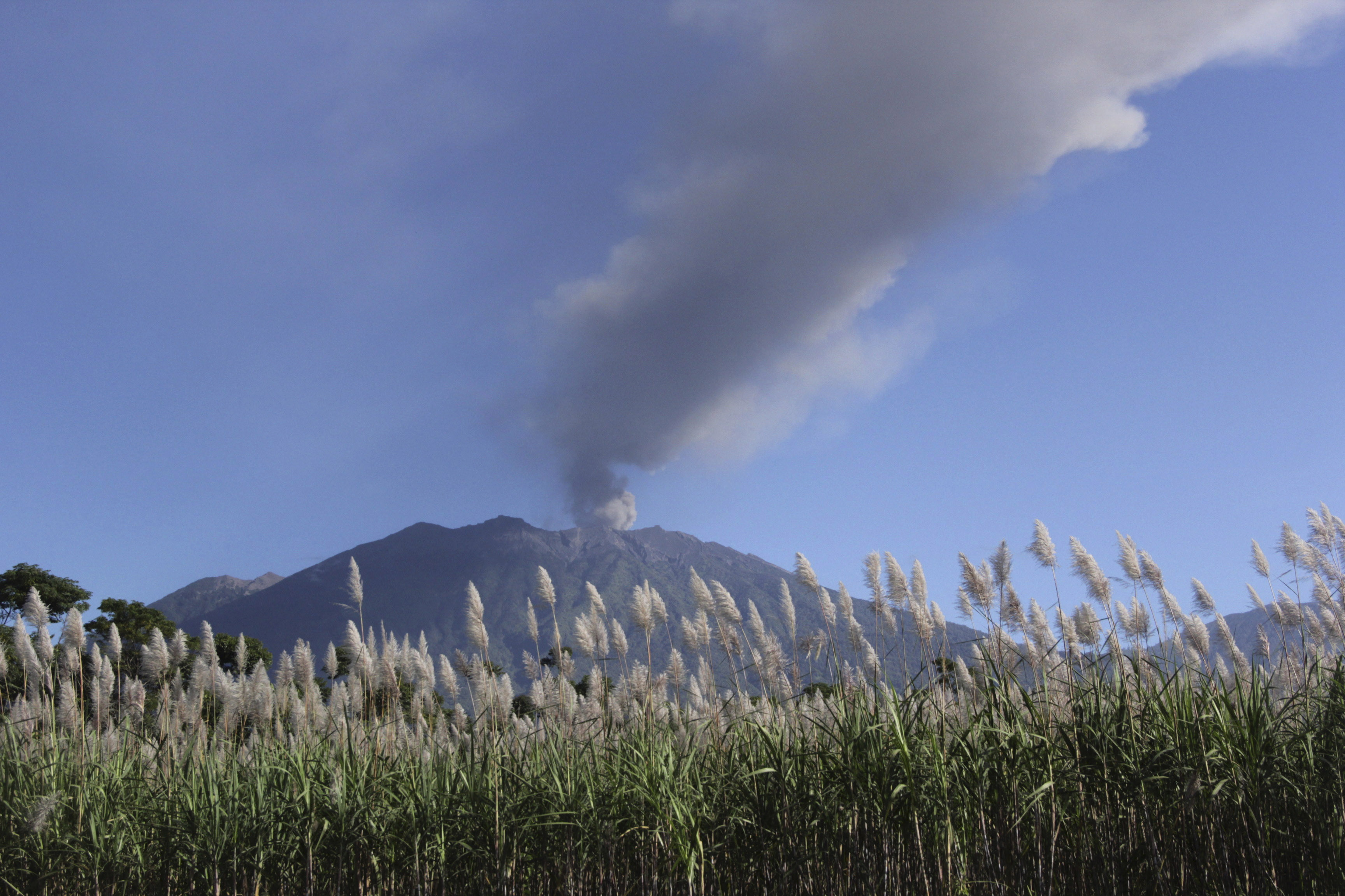 Ash and smoke are emitted from the volcano Mount Raung seen from the village of Sumber Arum, near Banyuwangi, East Java province,  Indonesia on July 4, 2015